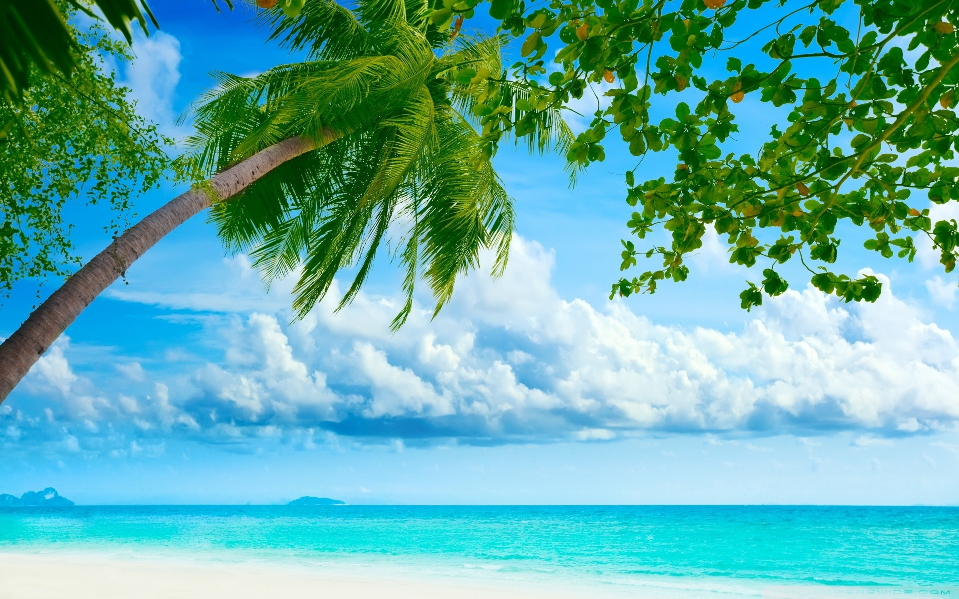 Tropical Beach Resorts HD Wide Wallpaper for Widescreen