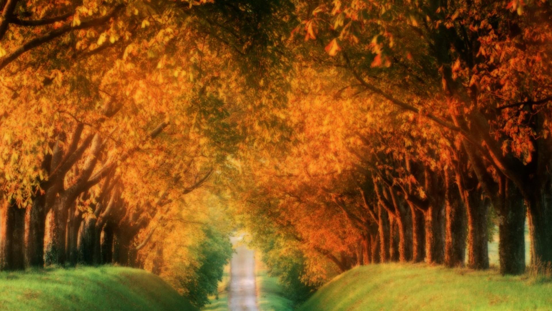 Pretty Fall Backgrounds For Desktops Fall wallpapers for desktop