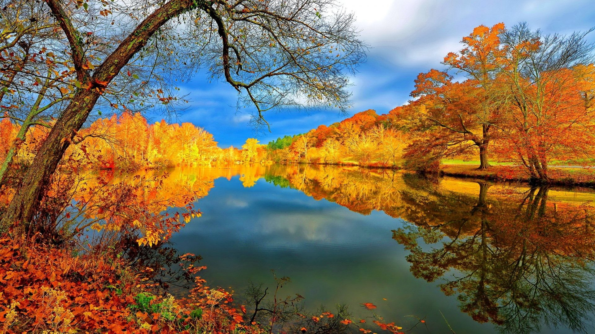 Falling Tag – Lake Fall Grass Colors Golden River Falling Branches Lvoely  Water Lovely Calmness Serenity