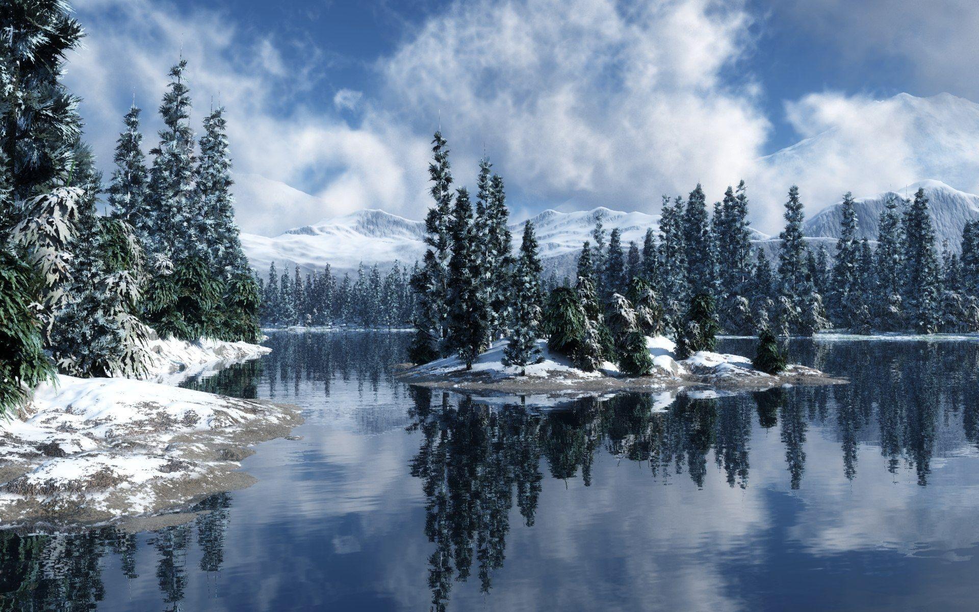 Snowy Pine Forest Wallpaper HD : Nature Wallpaper – Sprksam.com