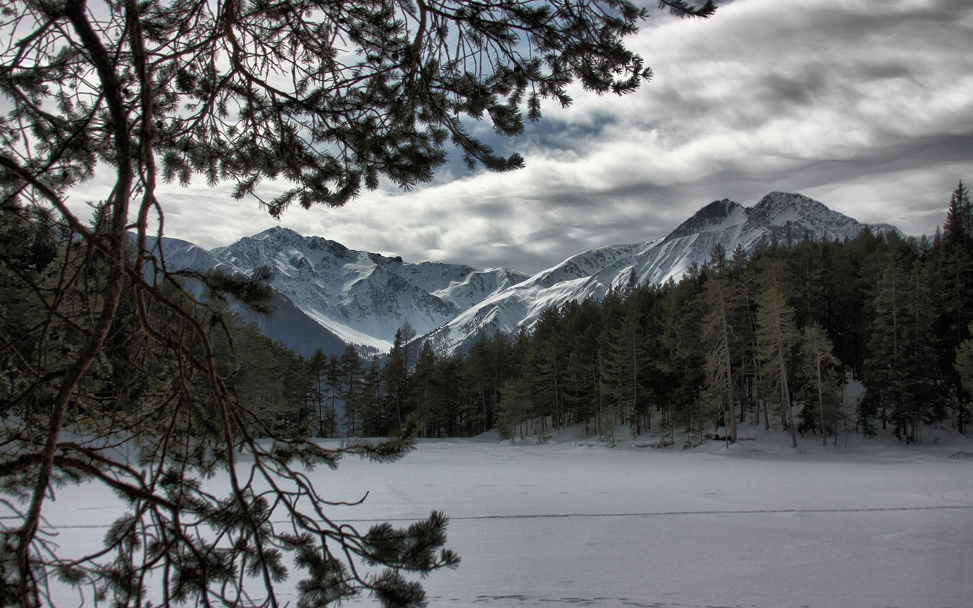 … wallpaper winter snow tree mountains forest desktop wallpaper …