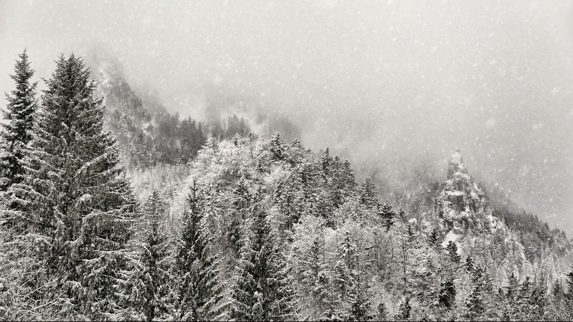 Winter snow mountains fog forest wallpaper     34157   WallpaperUP