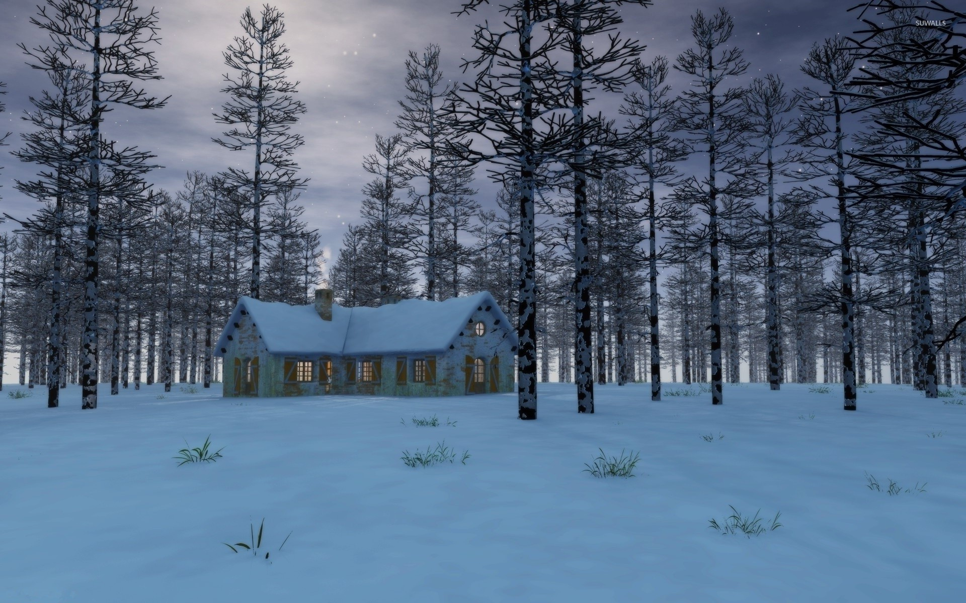 Snow on the house in the forest wallpaper