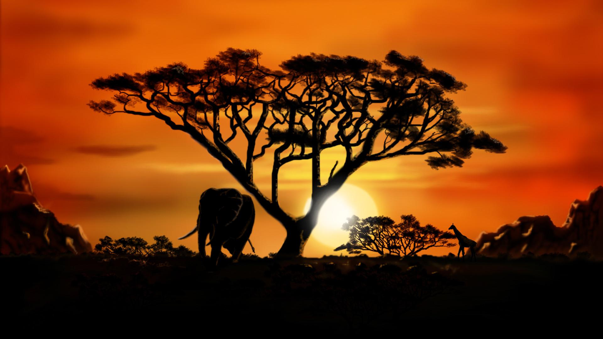 Africa Wallpapers   Best Wallpapers