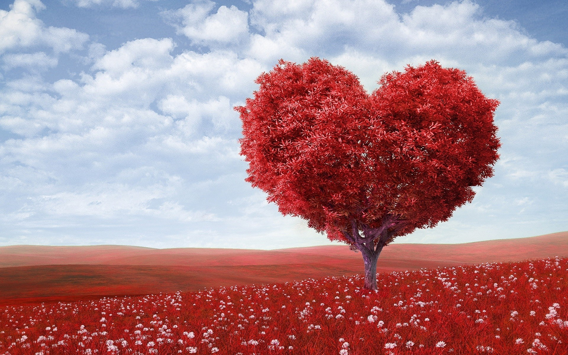 Nature wallpaper of landscape, nature, red, love