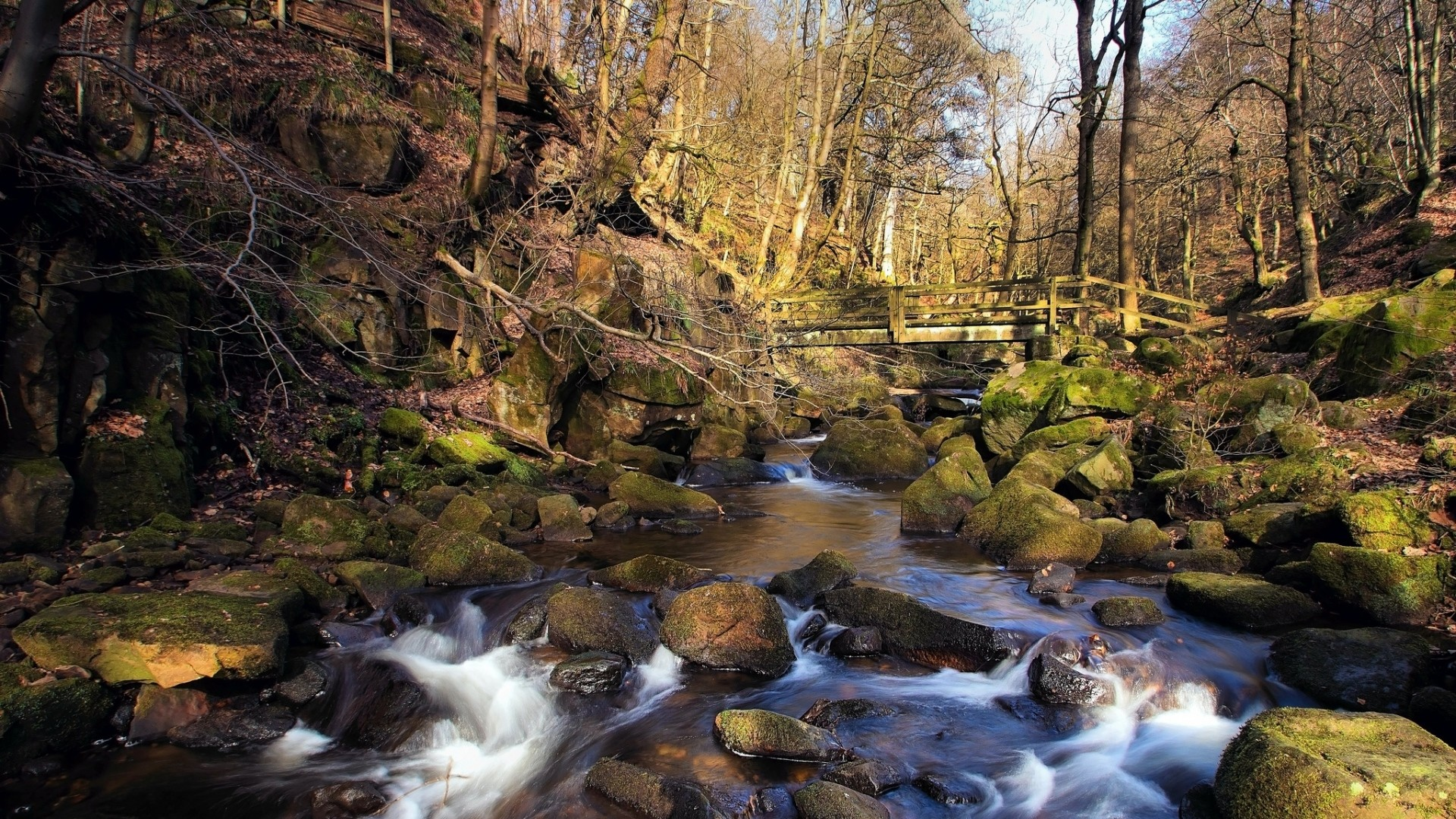 Preview wallpaper spring, forest, river, stream, rocks, bridge 1920×1080