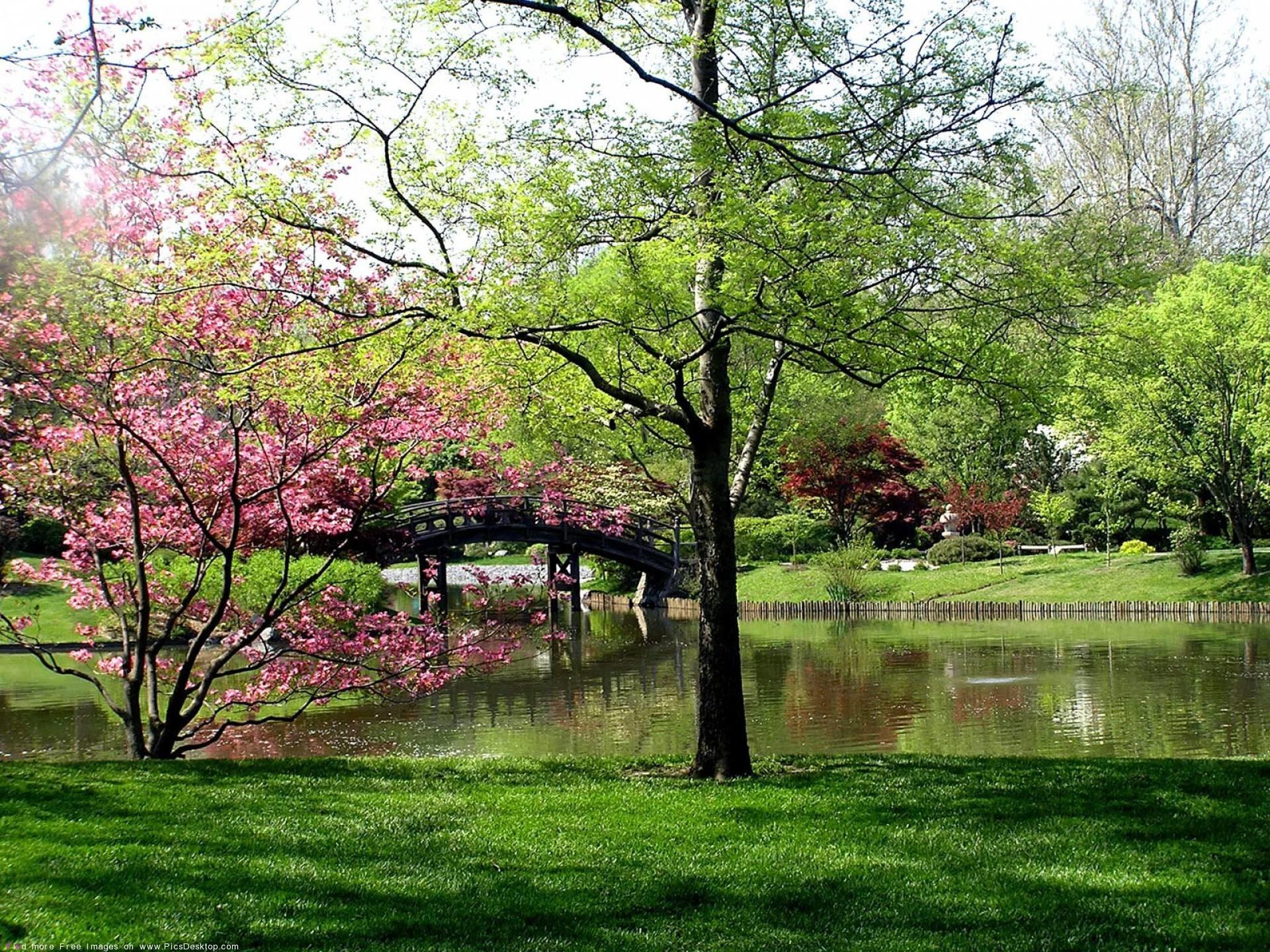 Nature Springtime Free Desktop Wallpapers for PC & Mac #11
