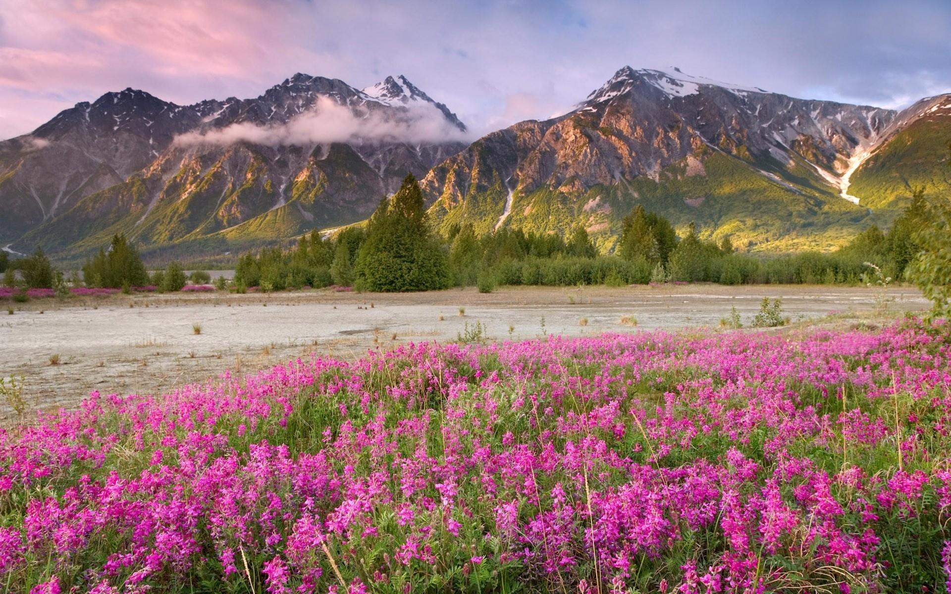 mountain images free   Spring Mountains desktop wallpaper