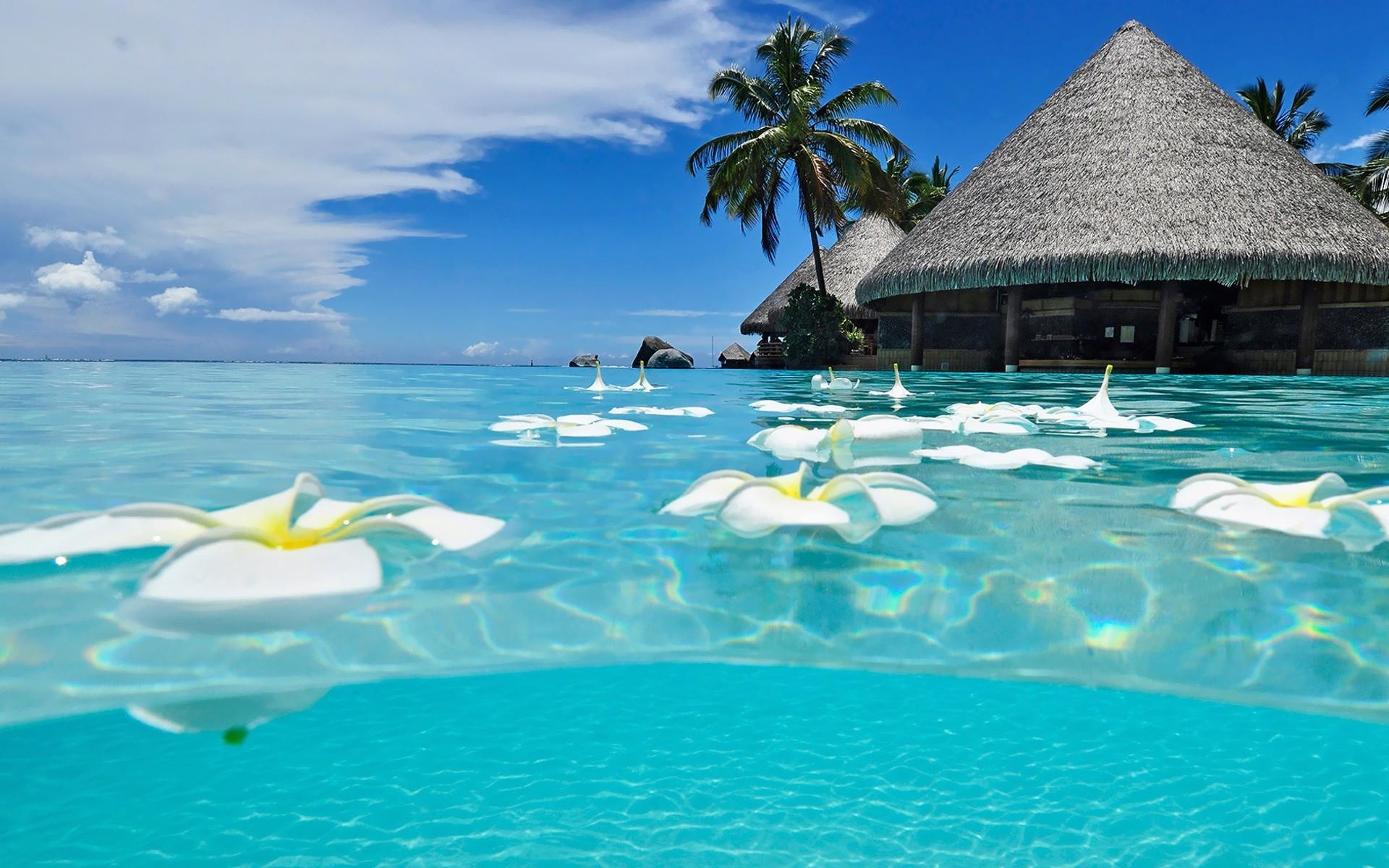 Cancun beach Beach HD desktop wallpaper, Mexico wallpaper, Cancun wallpaper,  Quintana Roo wallpaper – Beaches no.