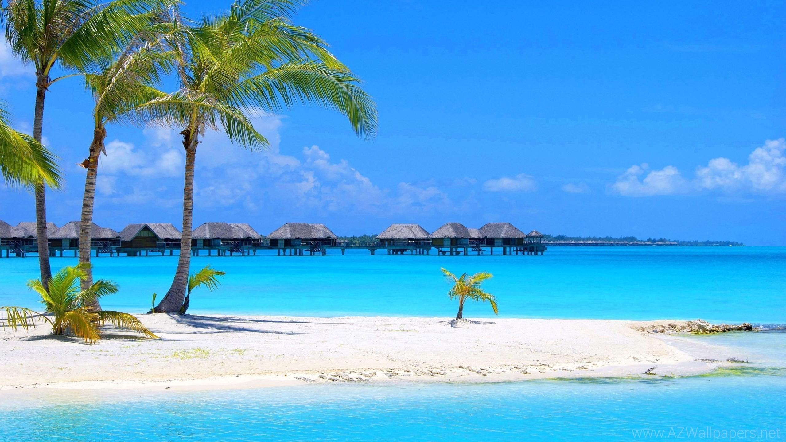 60 Mexico Beach
