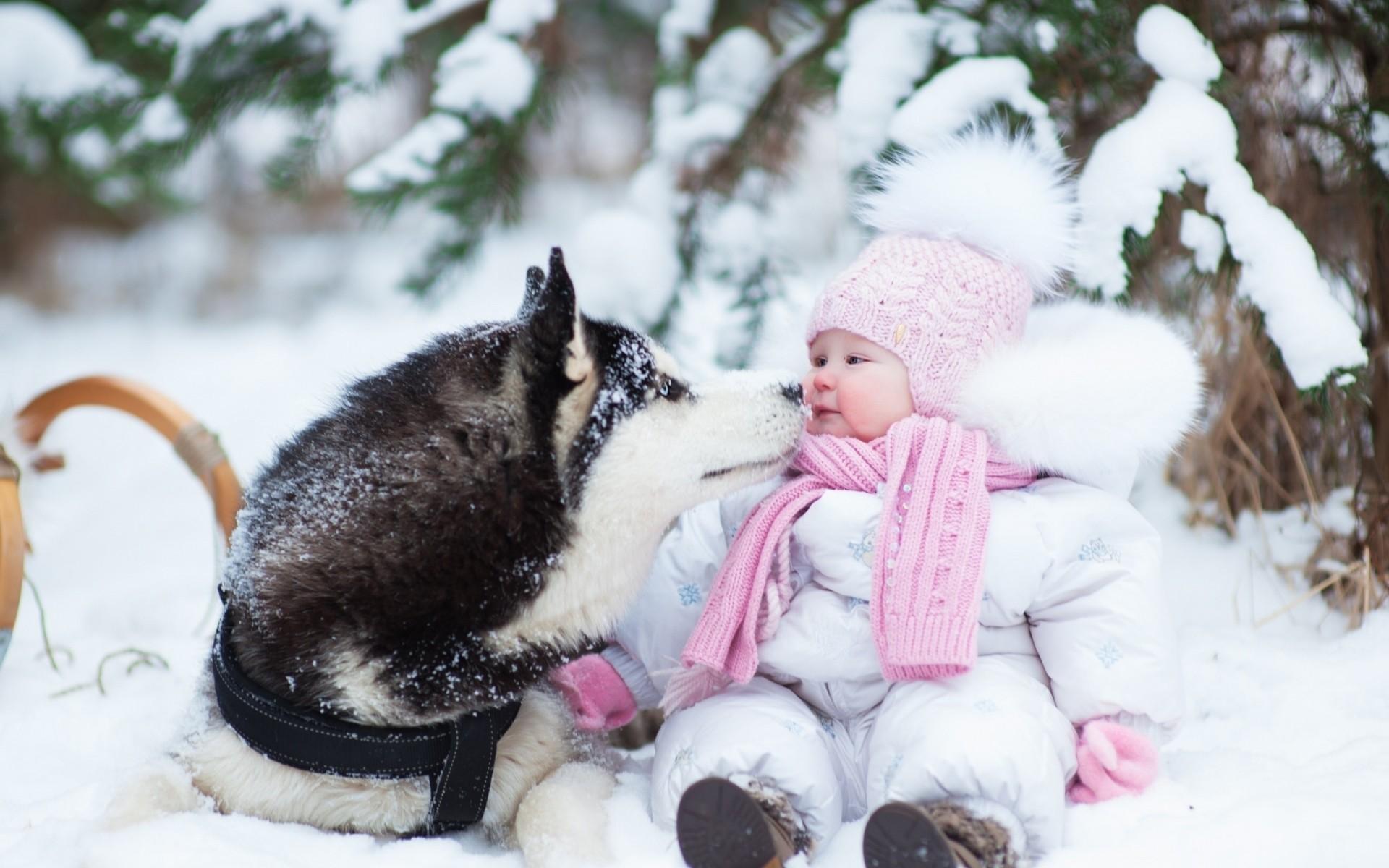 Preview wallpaper husky, dog, child, snow, winter, photo shoot 1920×1200