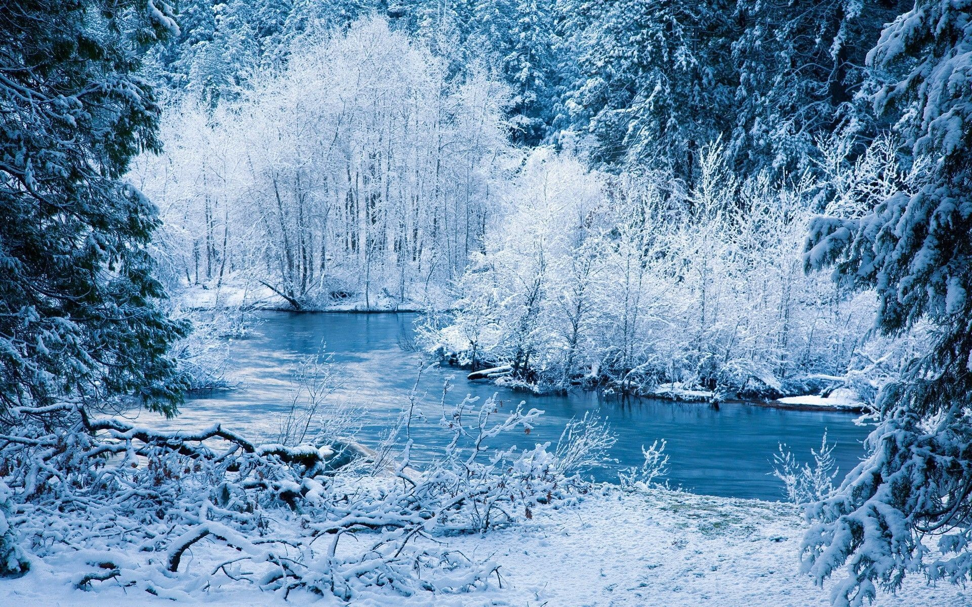 Gallery for – free desktop wallpapers winter season