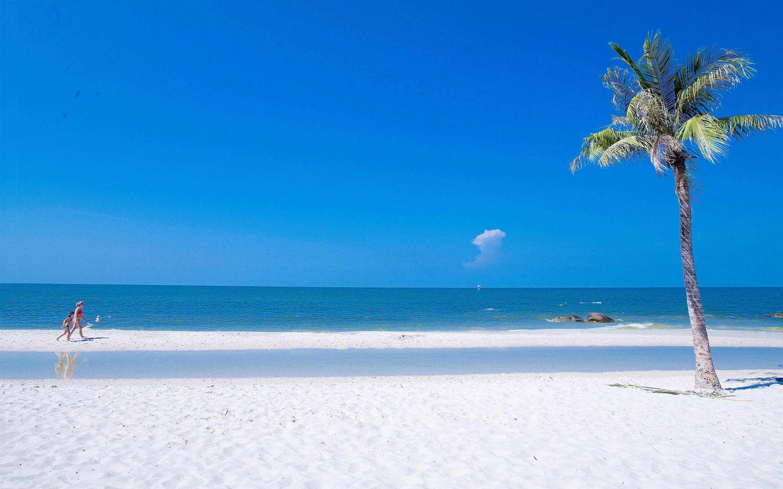 Beach Summer Ocean Wallpaper Full HD For Desktop