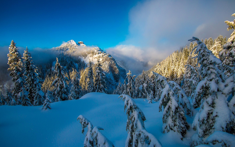 Nature / Winter mountains Wallpaper