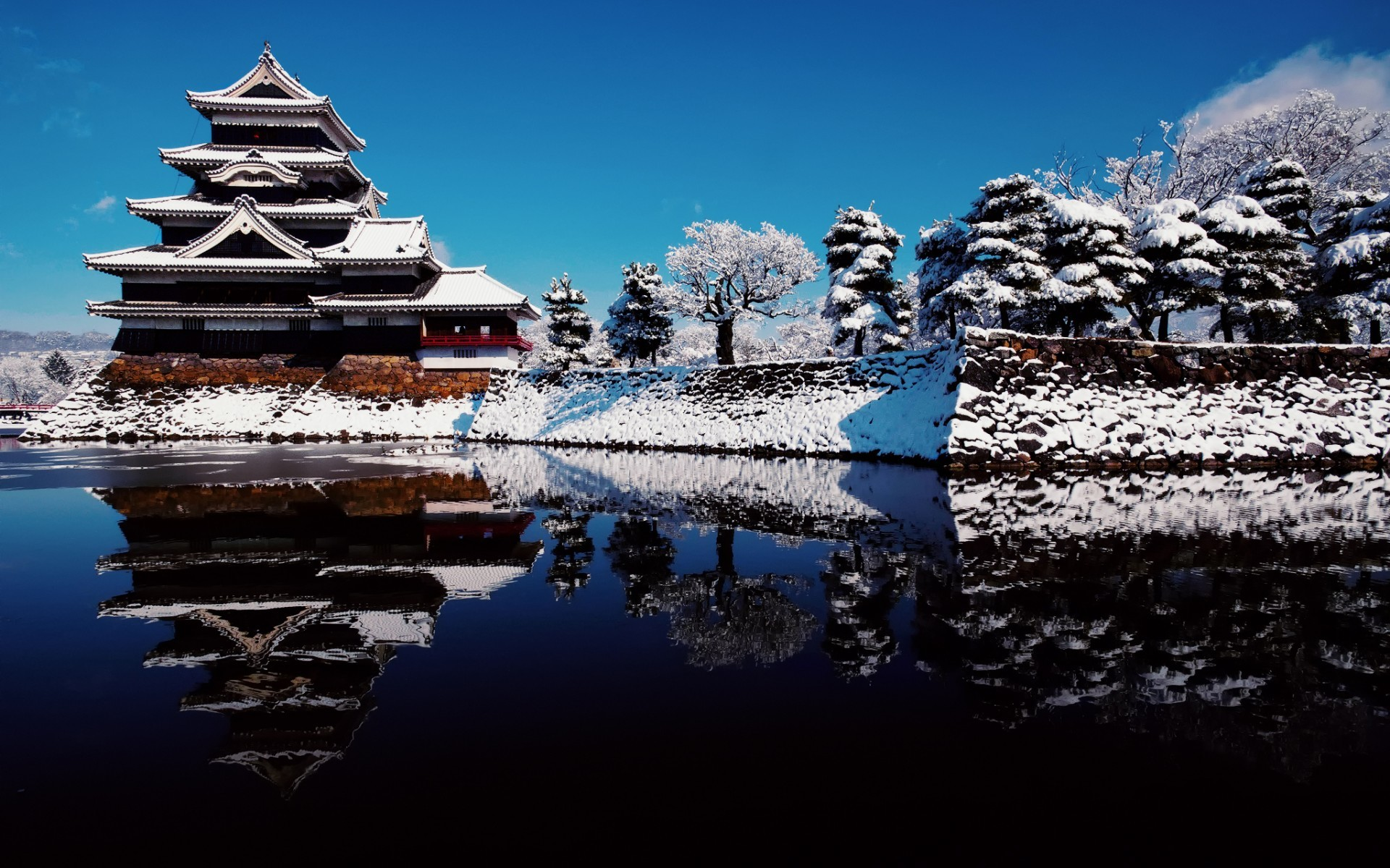 Japan Lights Winter Tree HD Wallpaper | FreeHDWall.Com | Free HD … |  winter in japan | Pinterest | Wallpaper