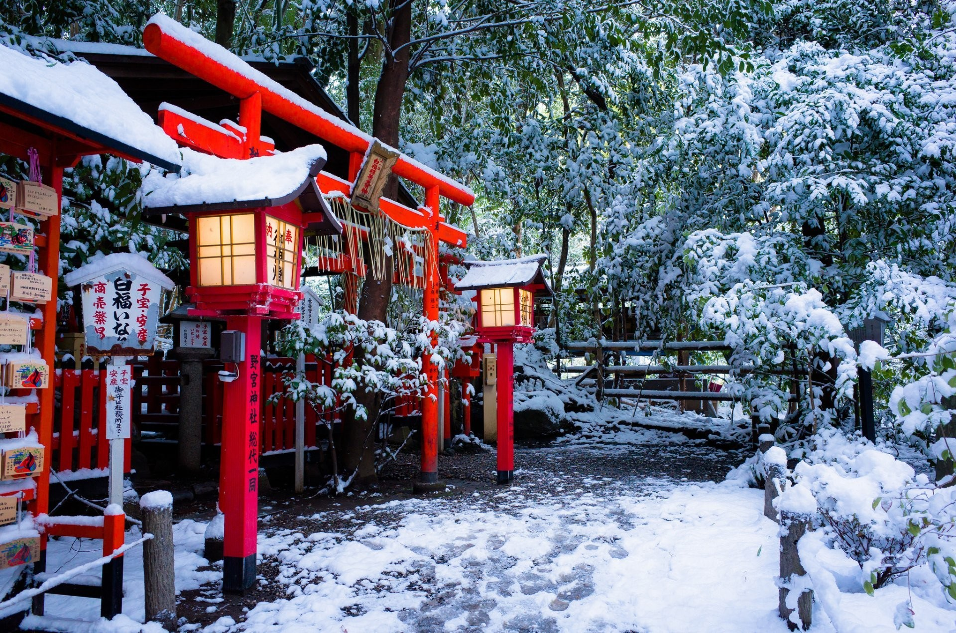 nonomiya shrine torii gate kyoto japan temple nonomiya torii kyoto japan  temple gate lamps winter snow