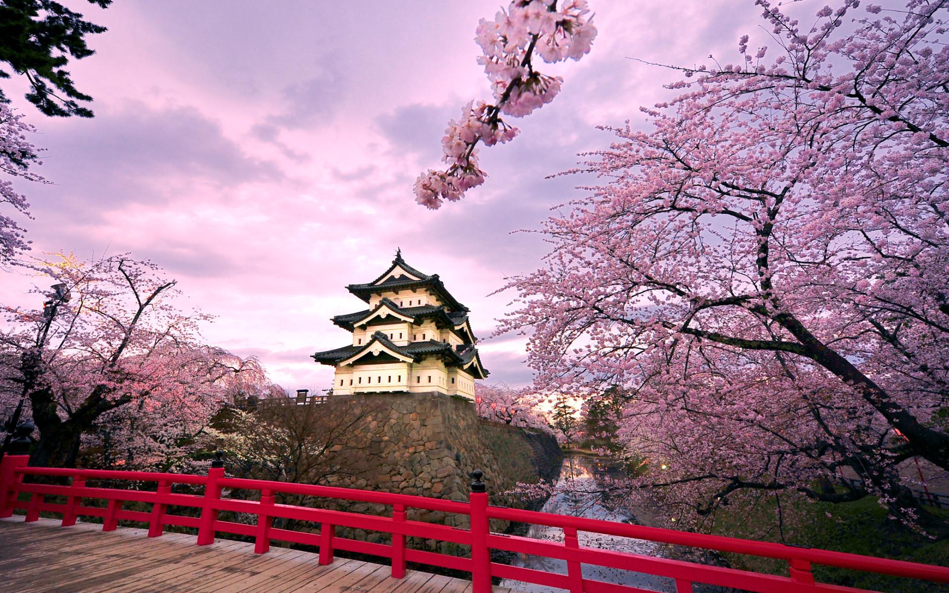 Hirosaki Castle Japan Wallpapers | HD Wallpapers