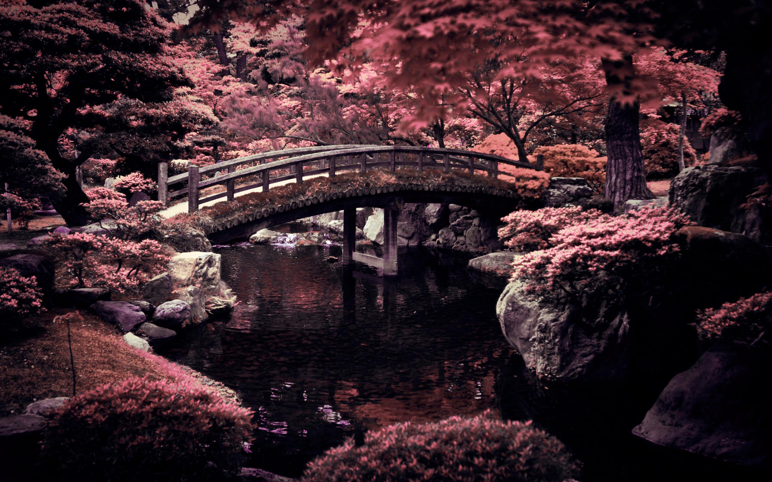 Imperial Garden Japan Wallpaper, Desktop | Wallpapers