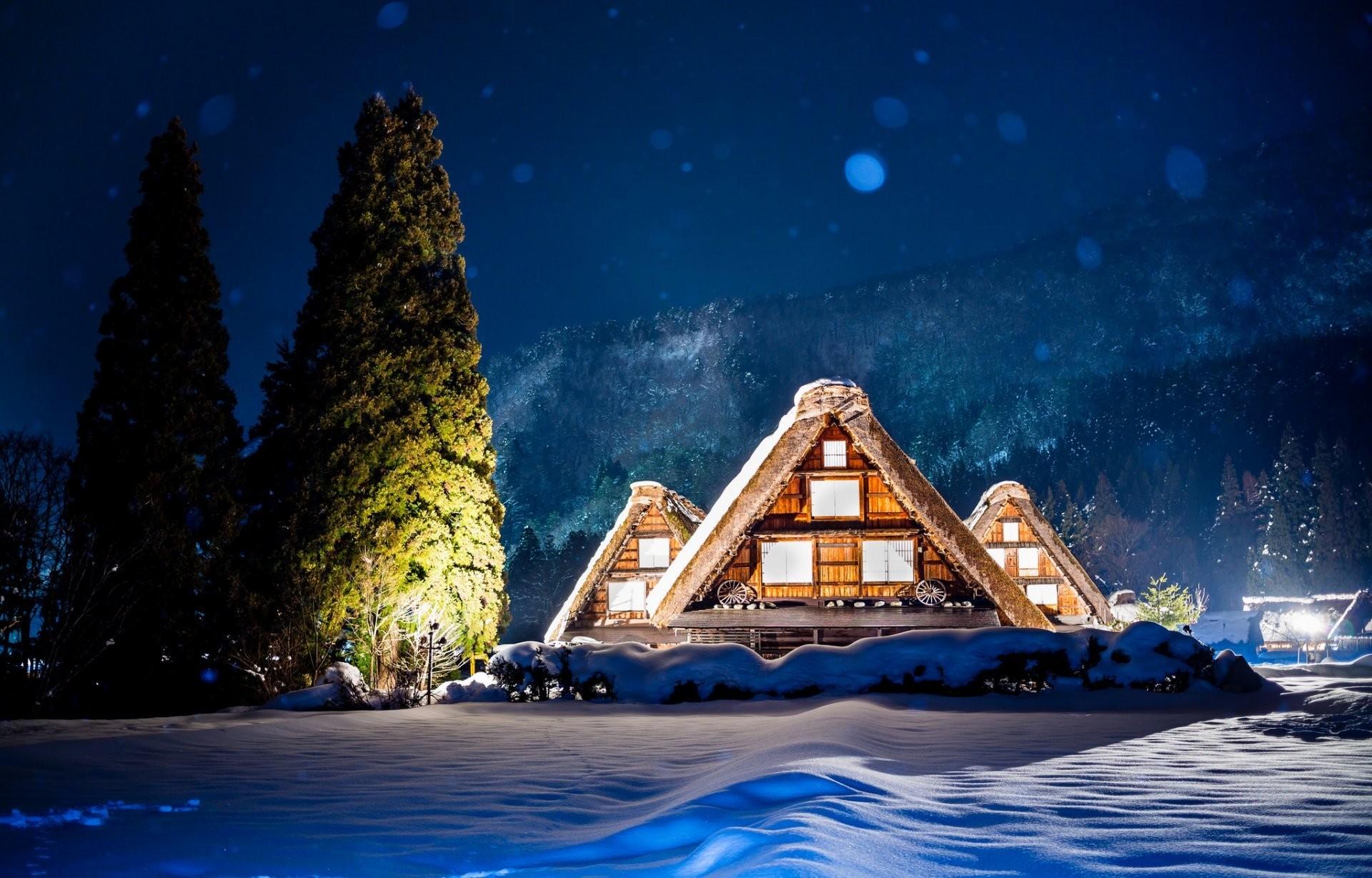 japan night lights house tree mountain winter snow highlight