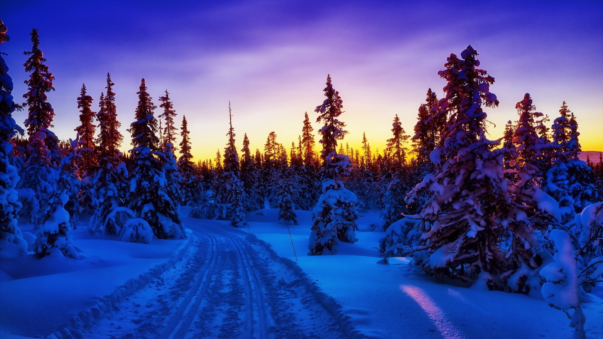 Forests – Winter Forest Fabulous Sunrise Road Blue Wallpaper Background for  HD 16:9 High