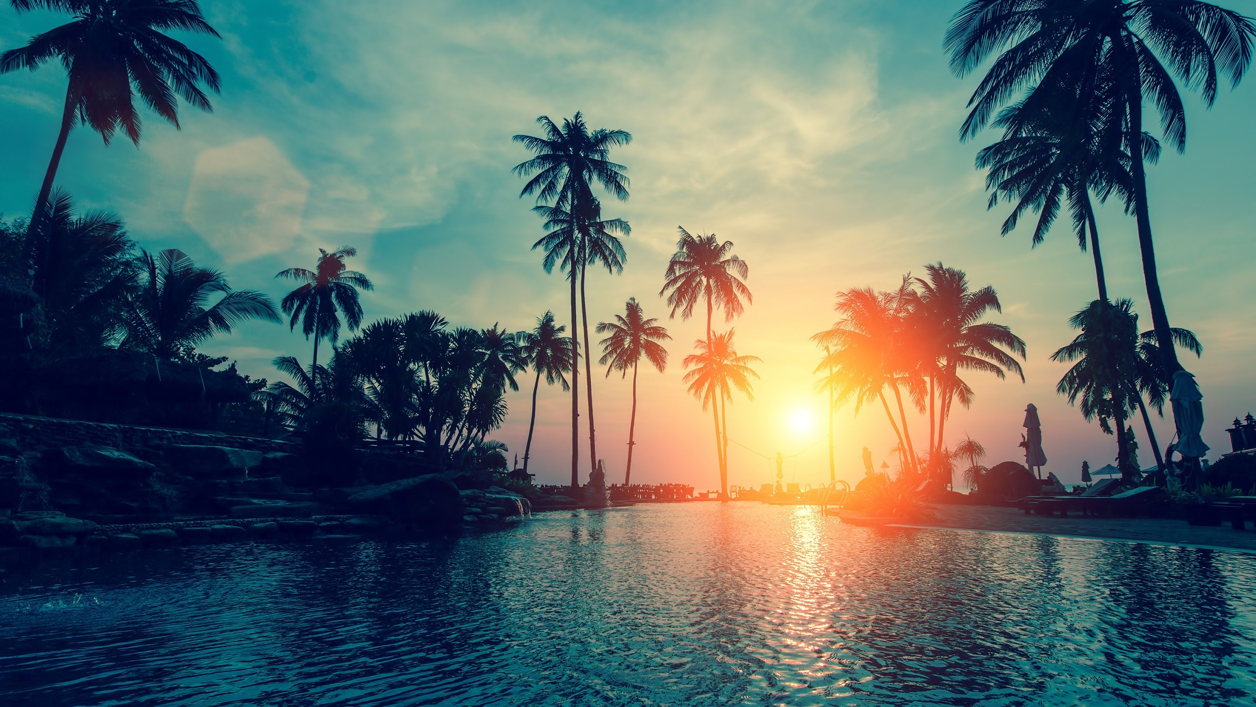Tags: Sunset, Palm trees …