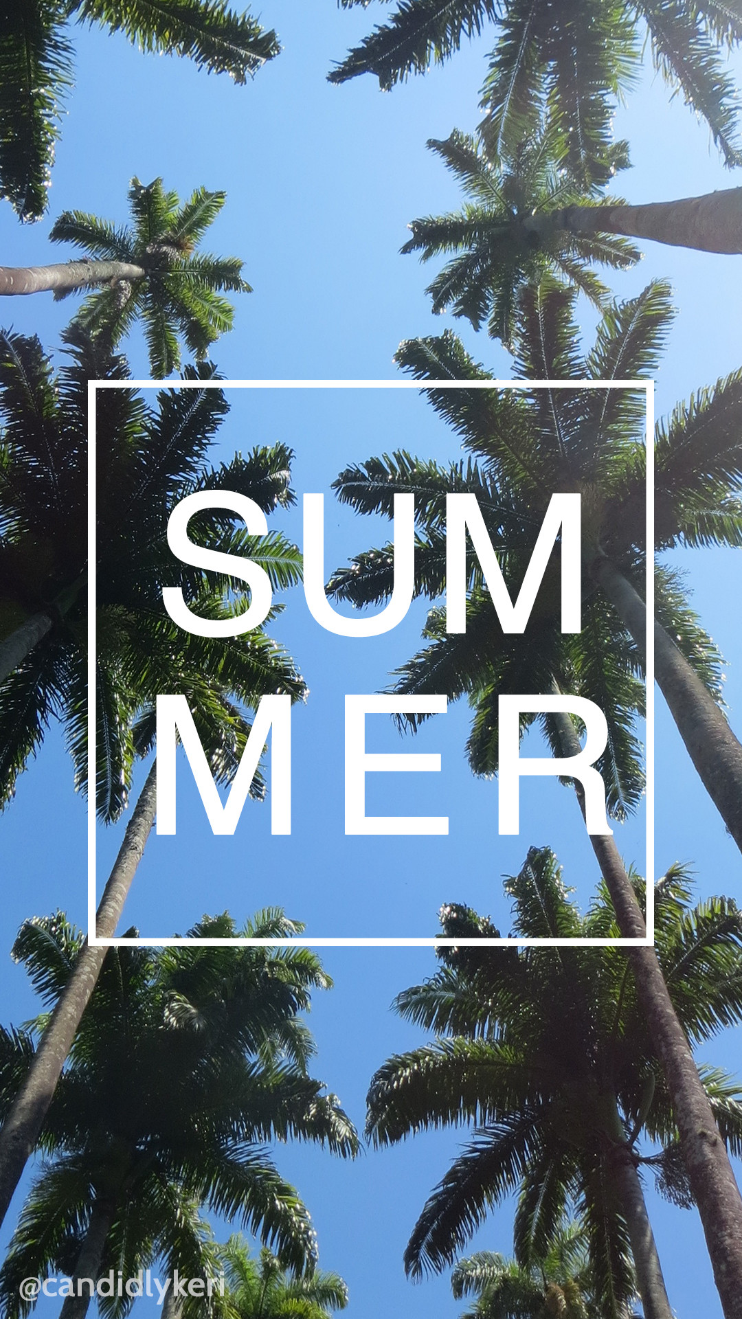 Summer Palm Tree Ocean background wallpaper you can download for free on  the blog! For