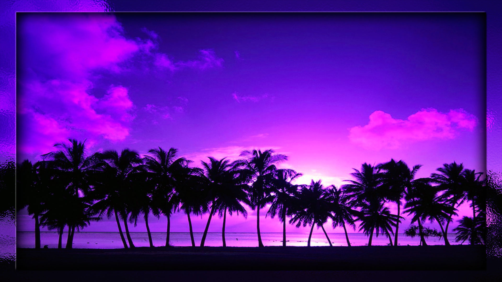 BEACH SUNSET PALM TREE WALLPAPER