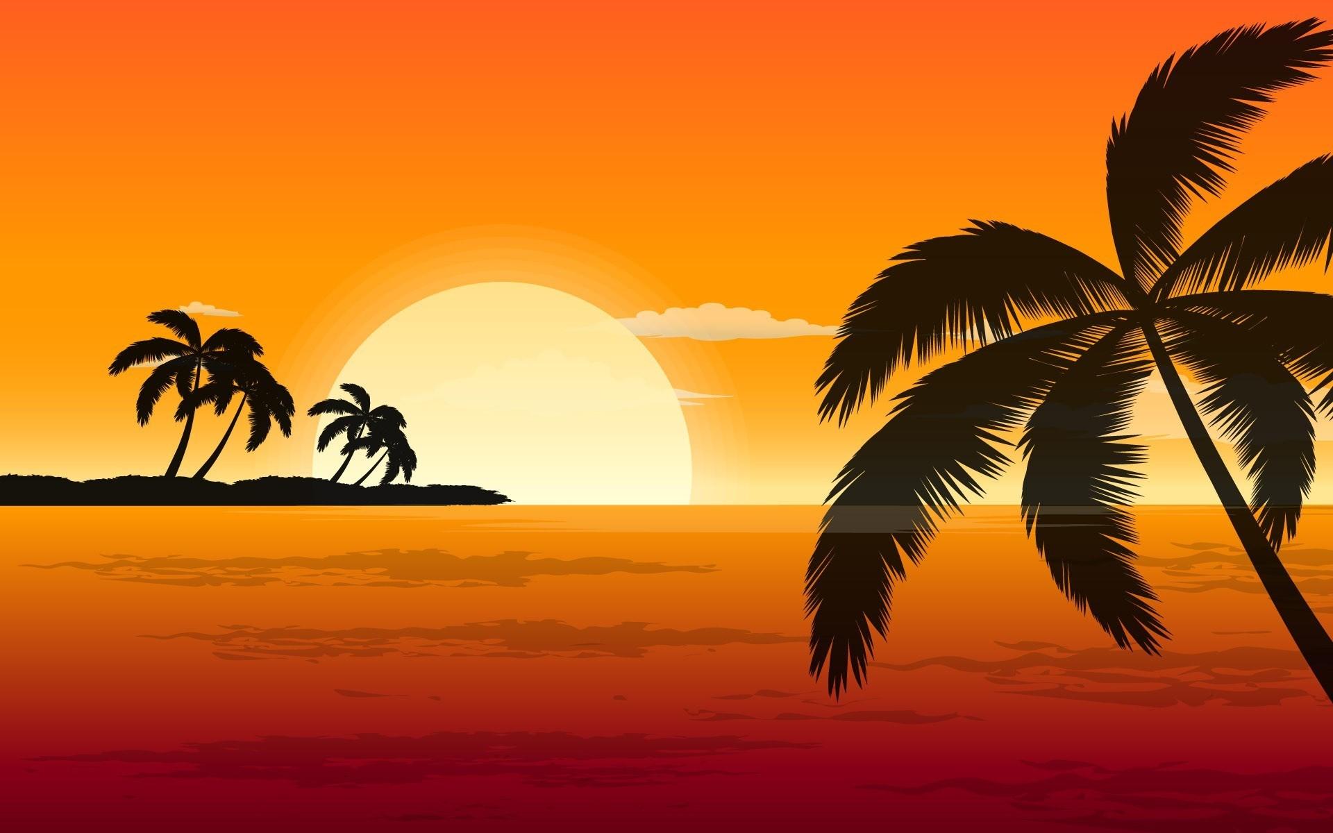 sunset orange vector shadows palm trees fresh new hd wallpaper