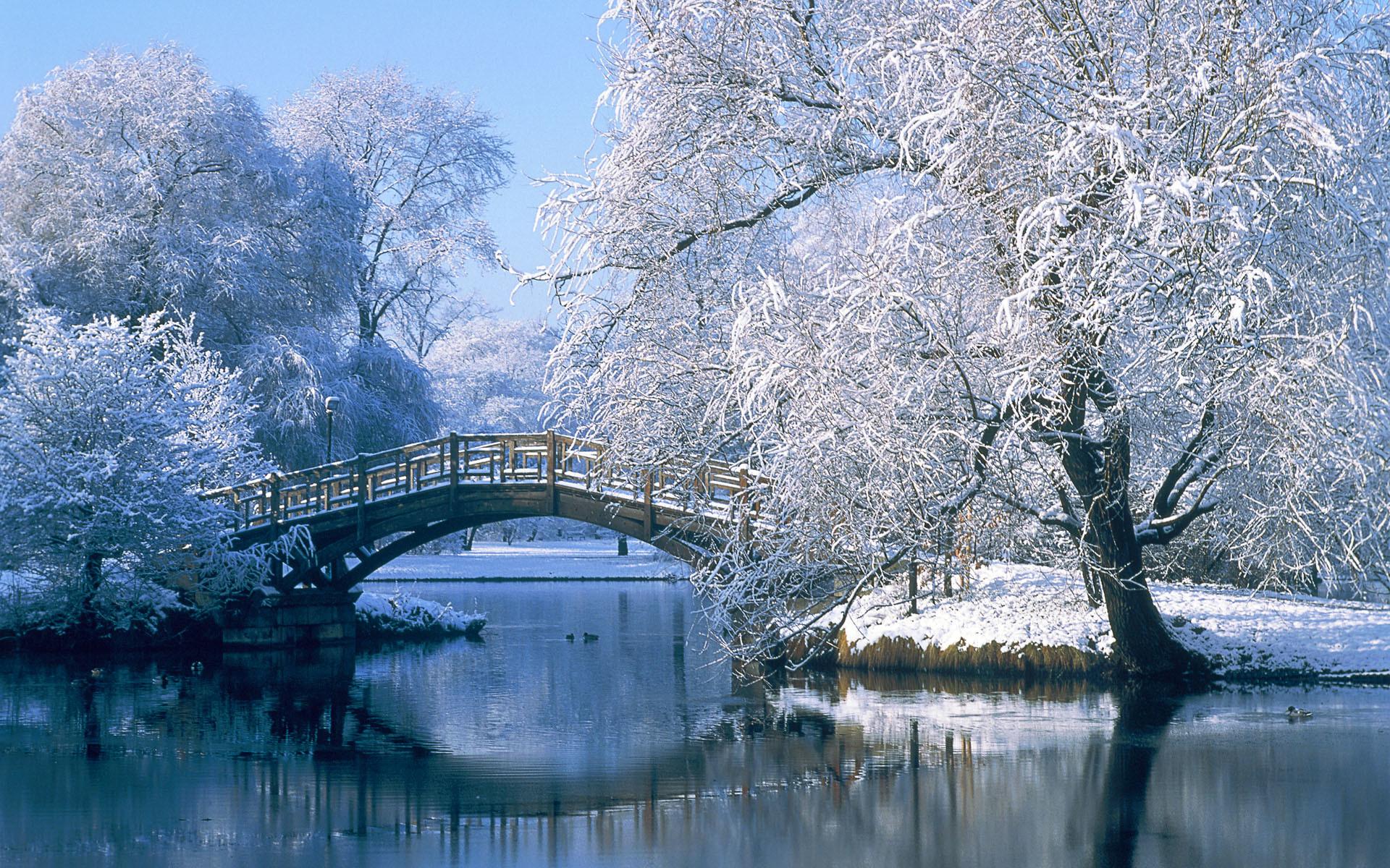 Photography – Winter Landscape Pond Water Bridge Tree Reflection Snow  Wallpaper