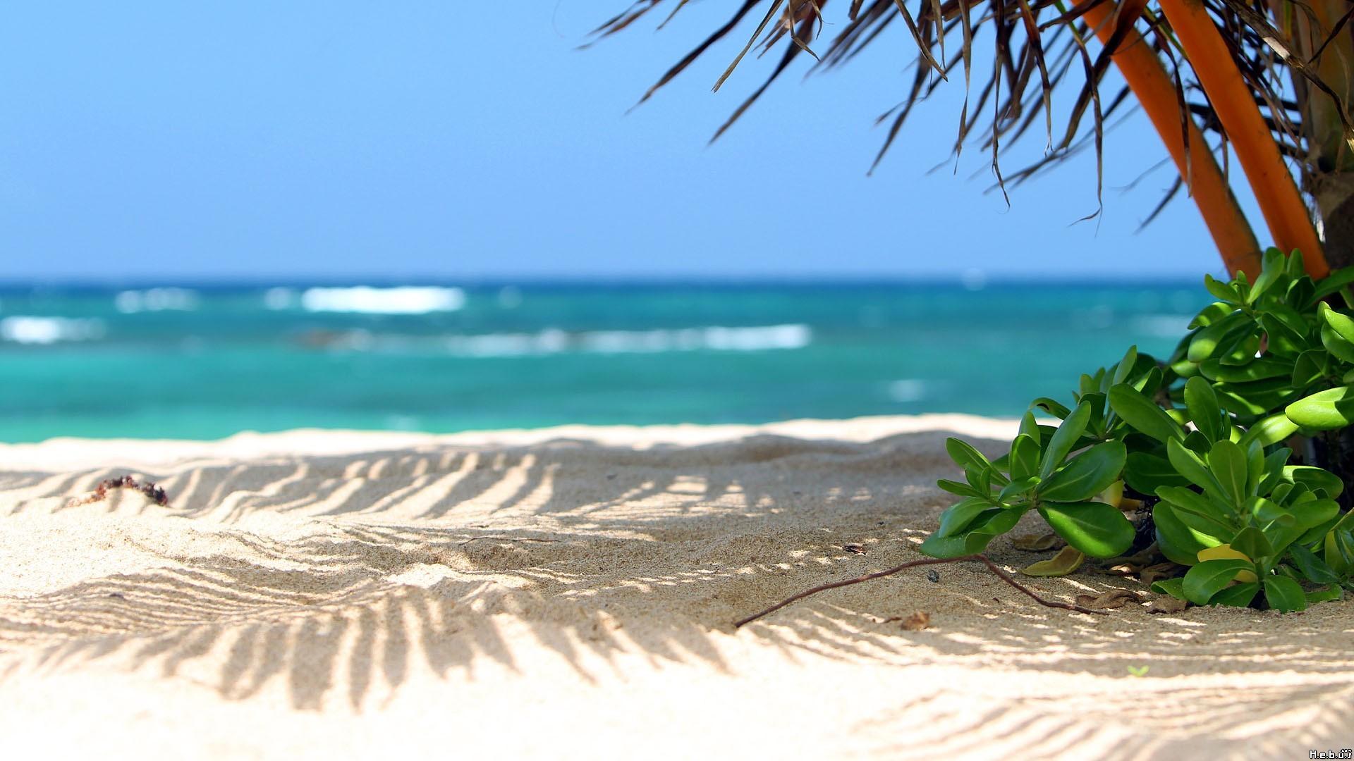 beautiful-beach-scenery-1.jpg (1920×1080)   Scenery Board   Pinterest    Wallpaper and Hd desktop