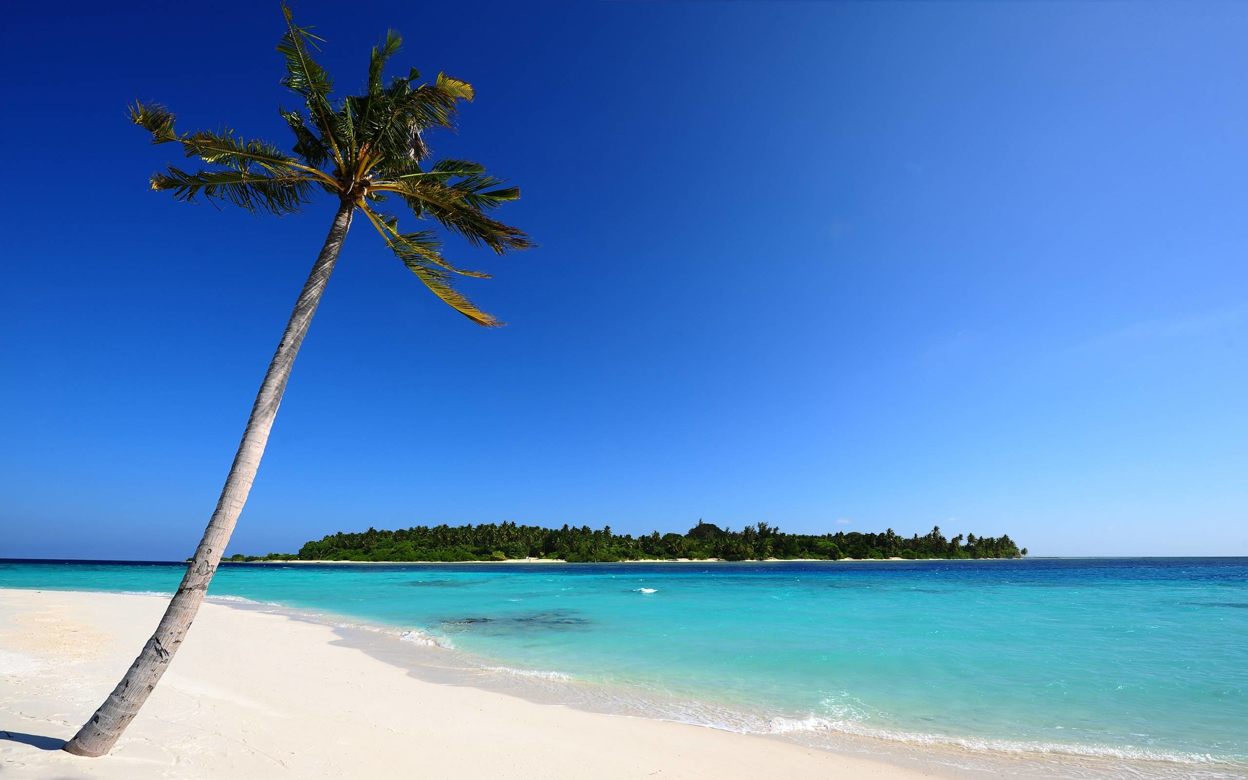 Beach Background Images Wallpapers and Background