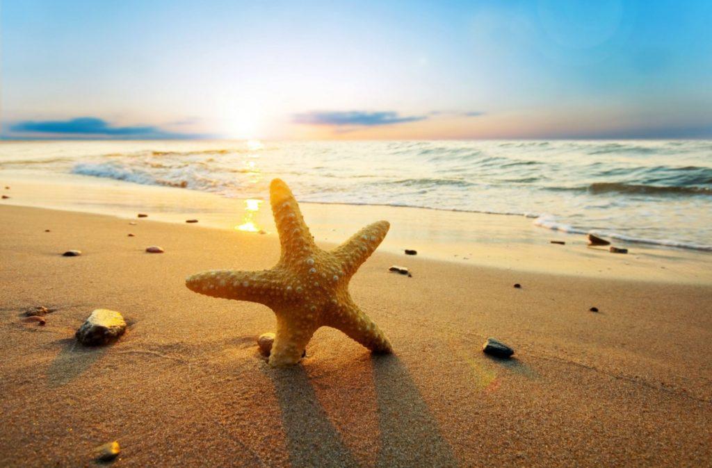 Explore Beautiful Beach, Most Beautiful, and more!