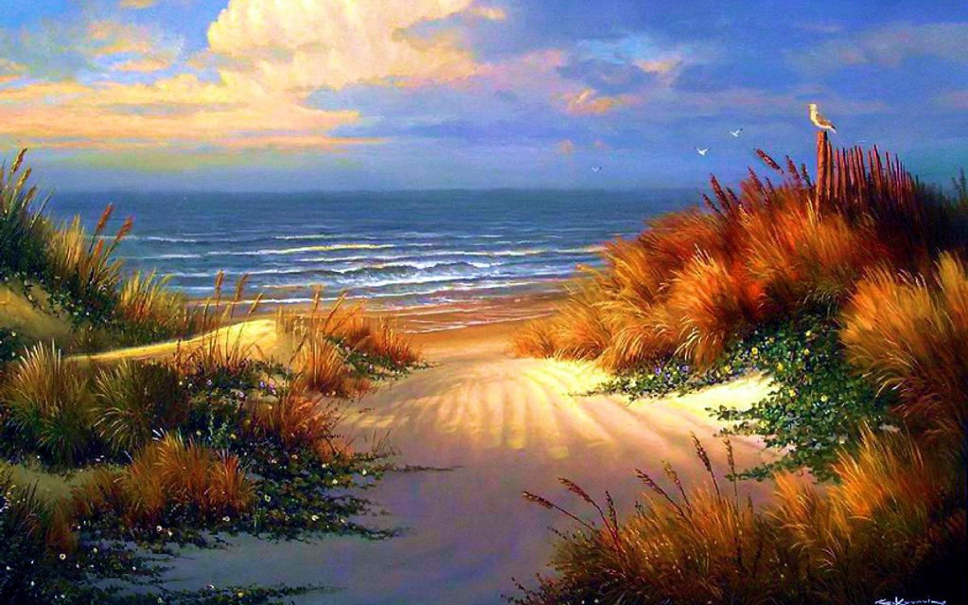Calm Ocean & Beautiful Beach wallpapers and stock photos