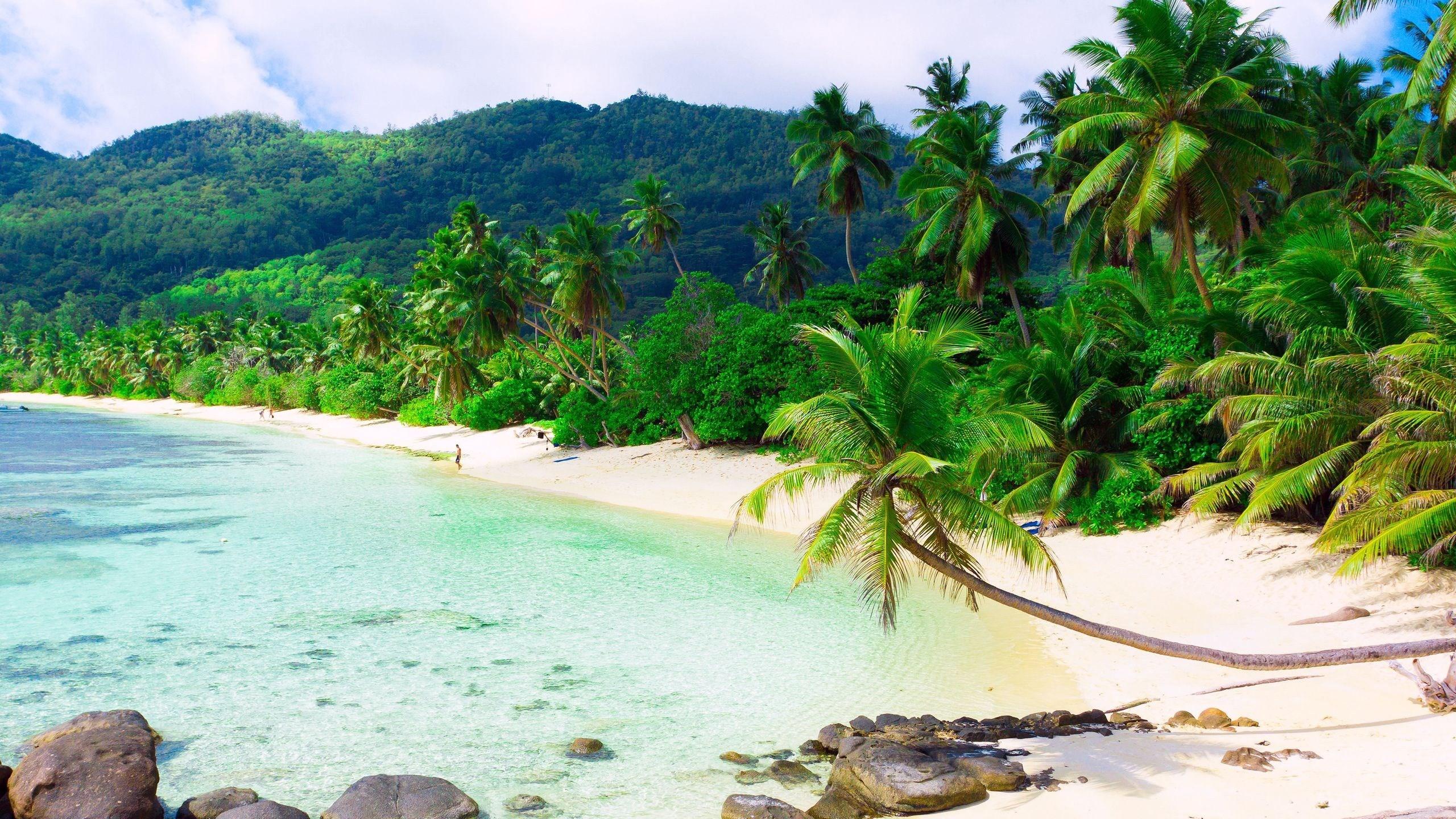 free desktop backgrounds for beach
