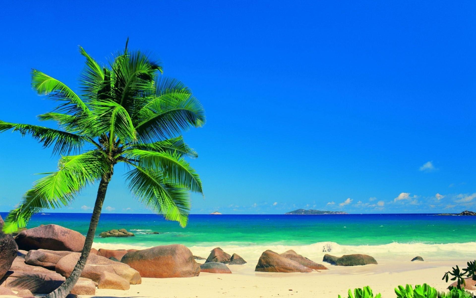 Beautiful-Beach-Backgrounds-Palm-Trees-High-Definition-Wallpapers-7ual.com_  – Guru Travel