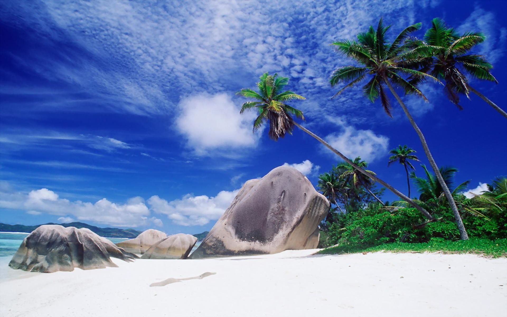beautiful beach nature image