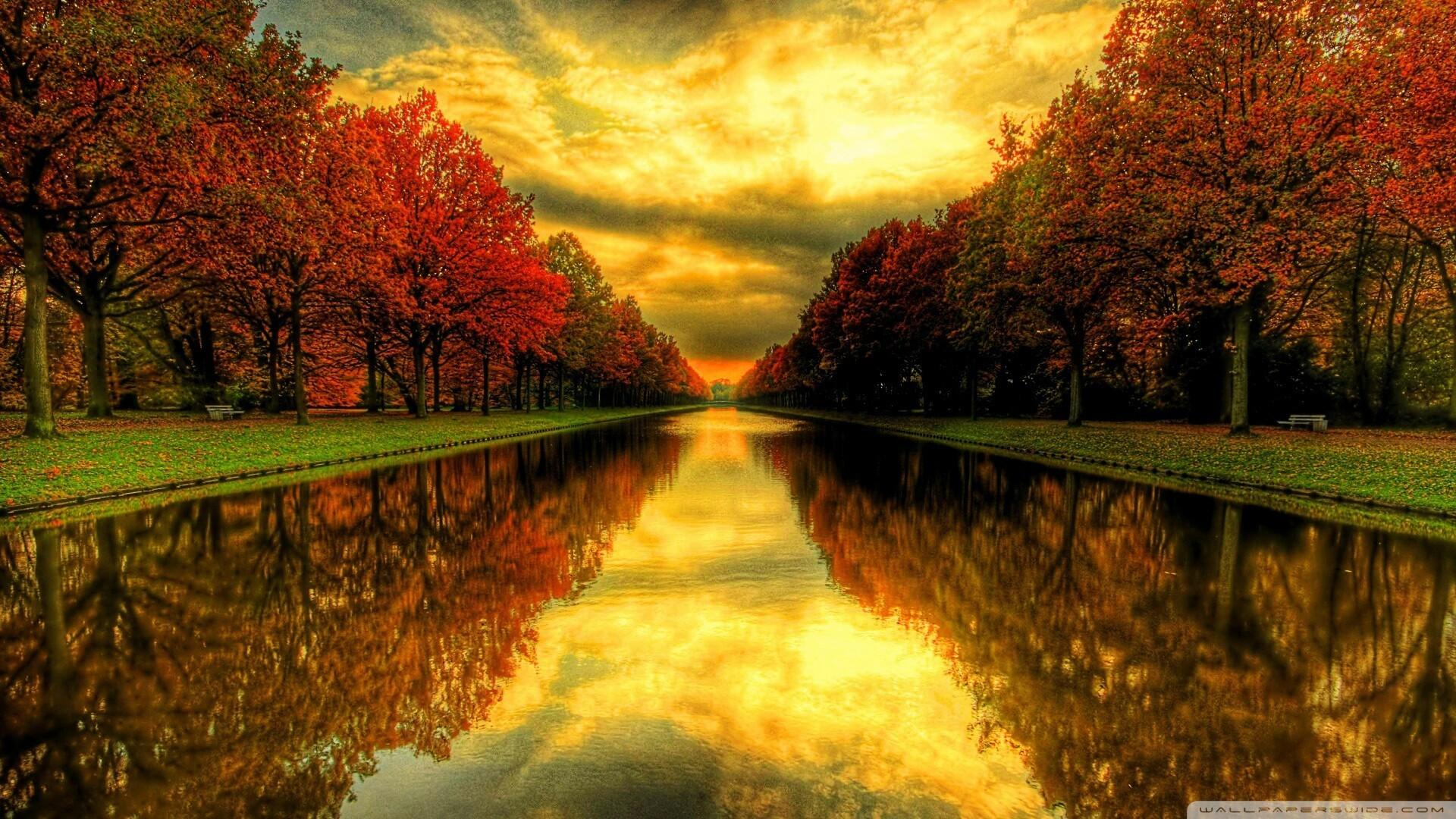 #autumn #leaves #sunset #sun #sky #fall #leaves #wallpaper