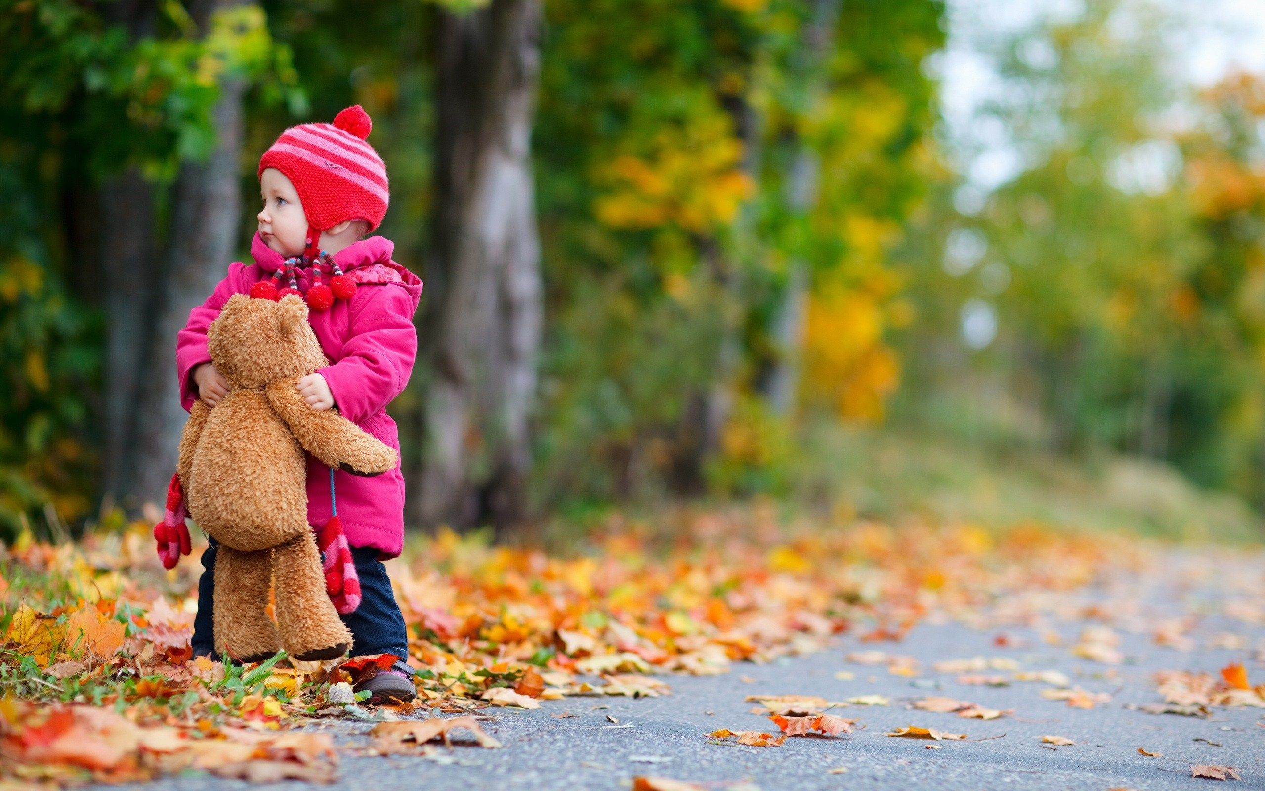child-girl-bear-toy-autumn-leaves-nature-photo-