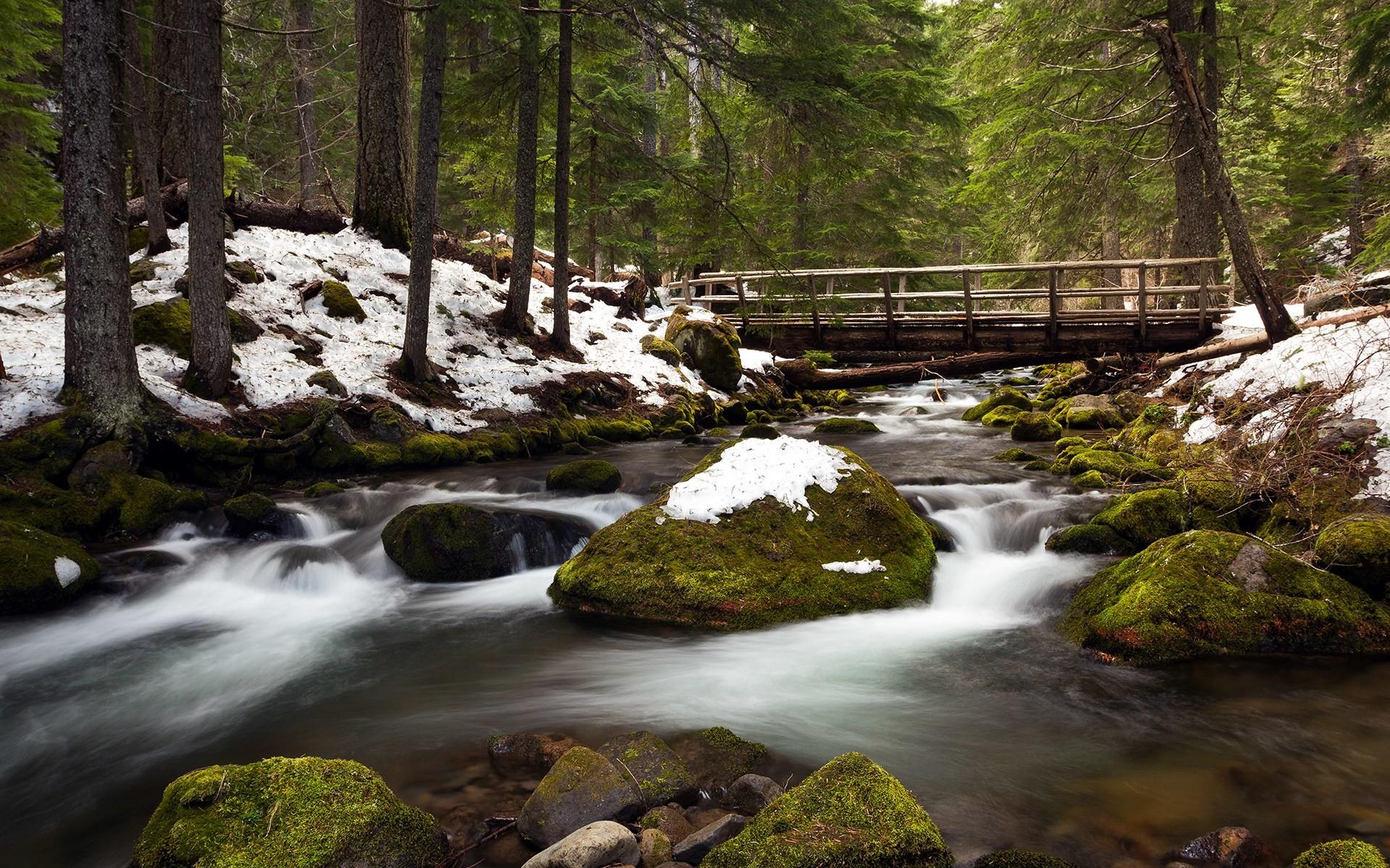 free screensaver wallpapers for river · Spring Desktop …