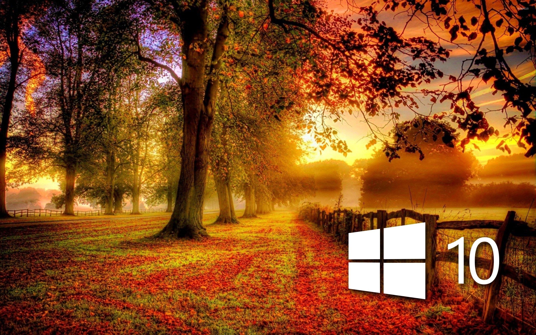 Картинки на рабочий стол планшета осень лео перешел