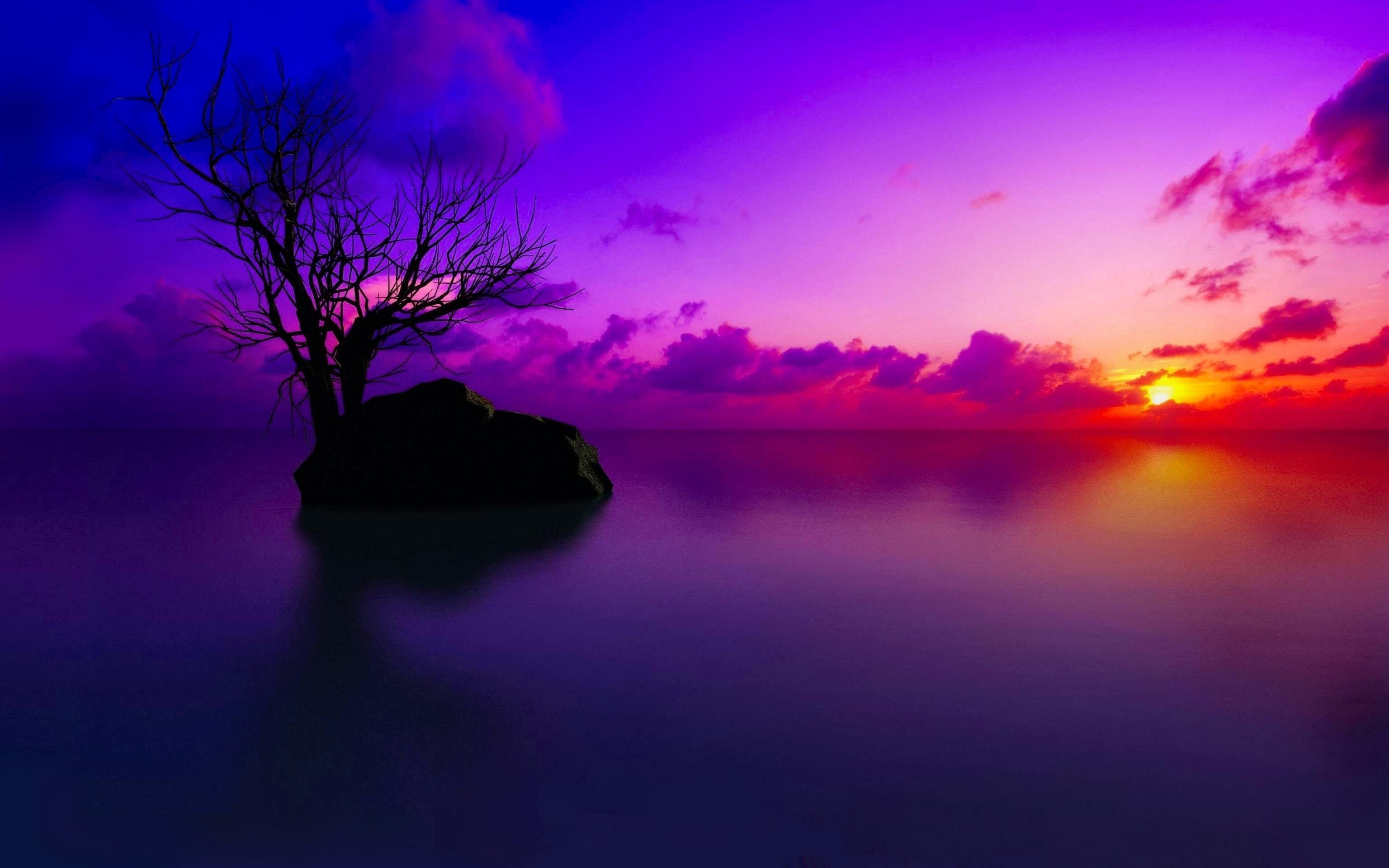 HD Wallpaper   Background ID:321859. Earth Sunset