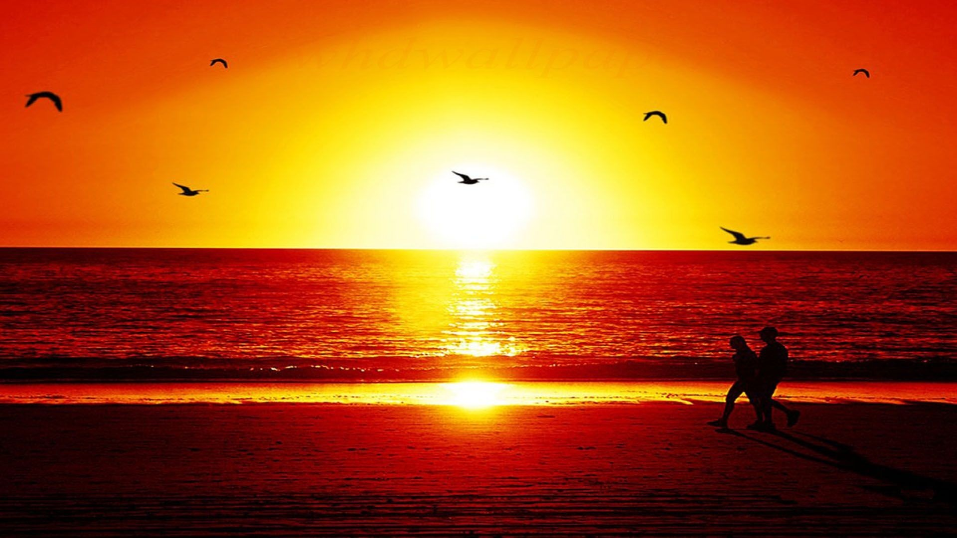 wallpaper details file name sunset wallpaper hd widescreen uploaded by .