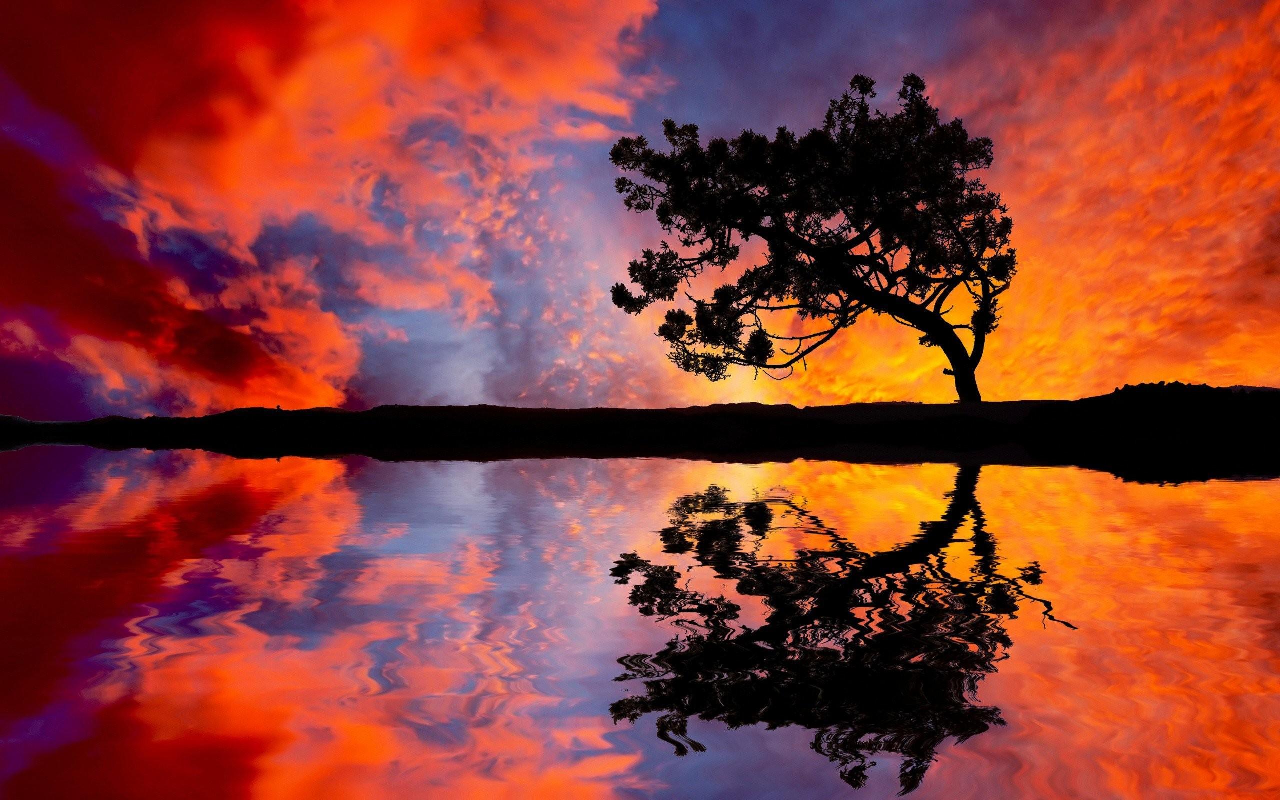 … 6944719-tree-sunset-reflection …