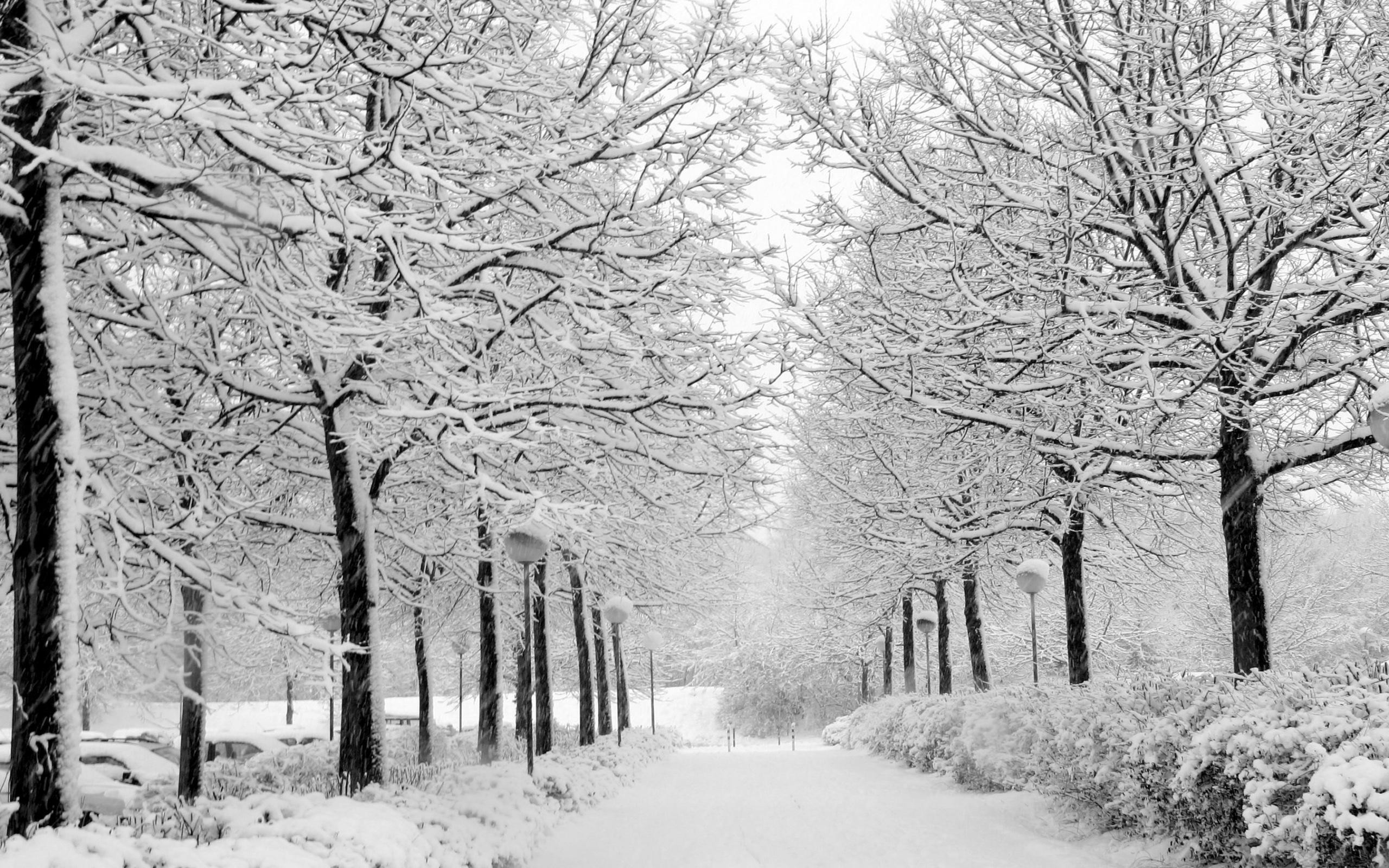 Wallpapers For > Snow Desktop Backgrounds