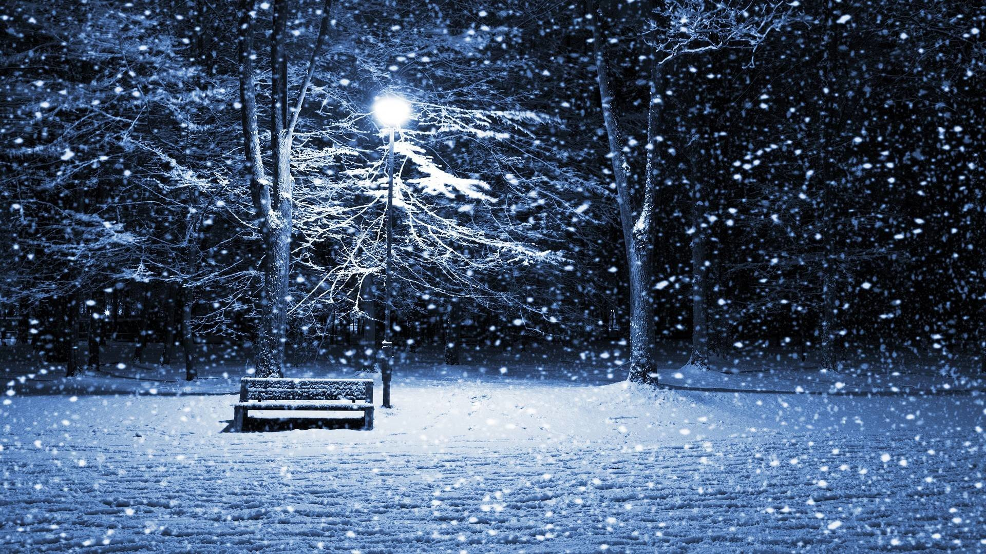 Winter Snow HD Background | Download HD Wallpapers