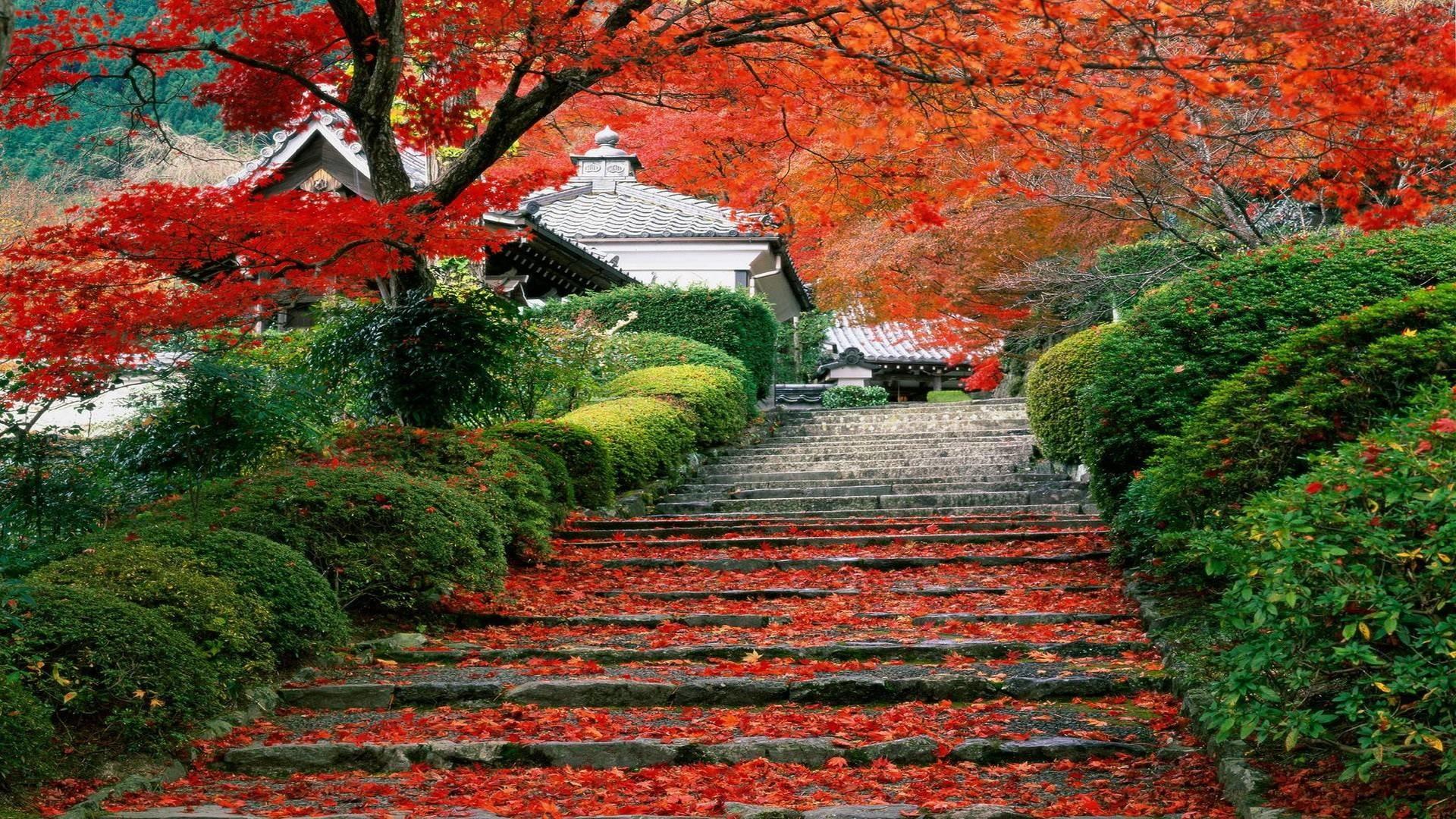 Download Japan Landscapes Wallpaper   Wallpoper #370287