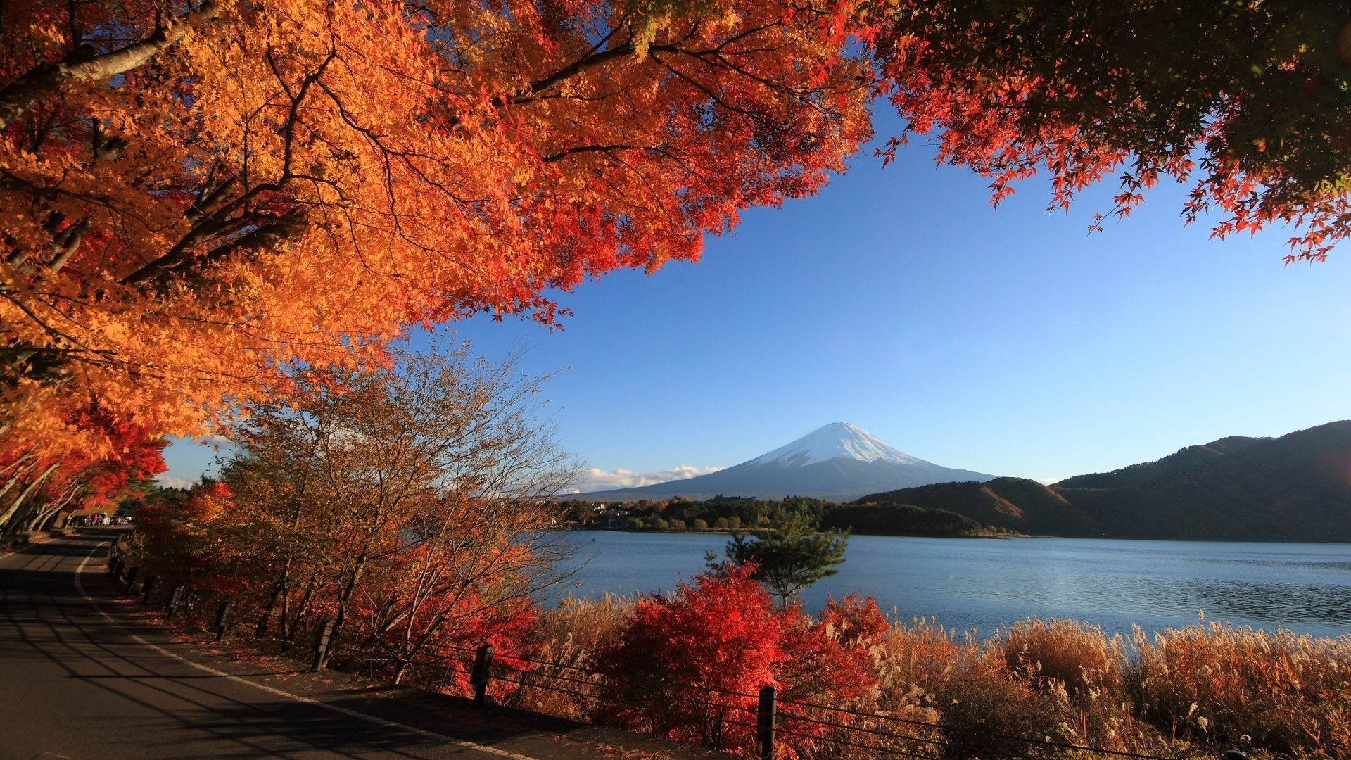 Fuji Tag – Nature Mountain Japanese Scenery San Lake Autumn Japan Fuji  Mobile Wallpapers for HD