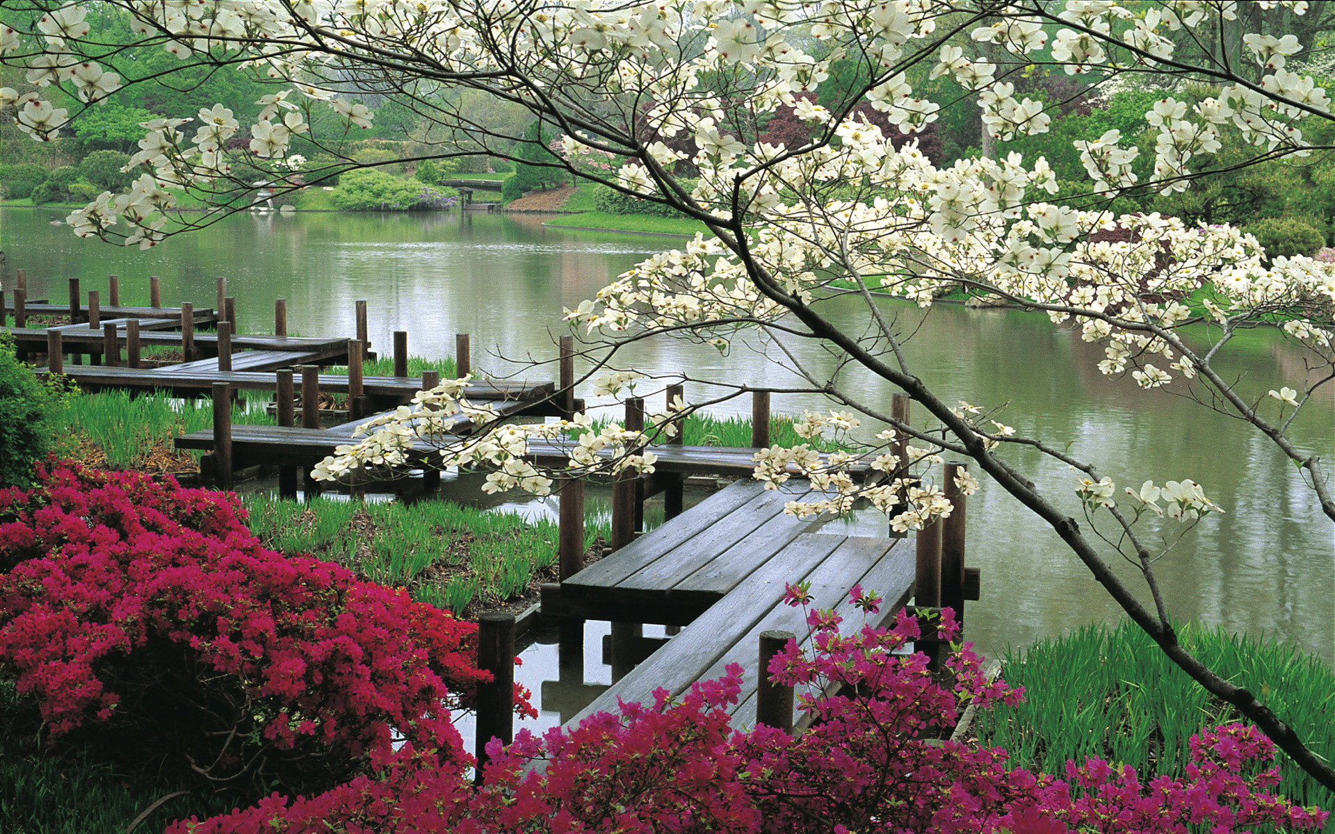Beautiful Scenery Pictures 23   Projects to Try   Pinterest .