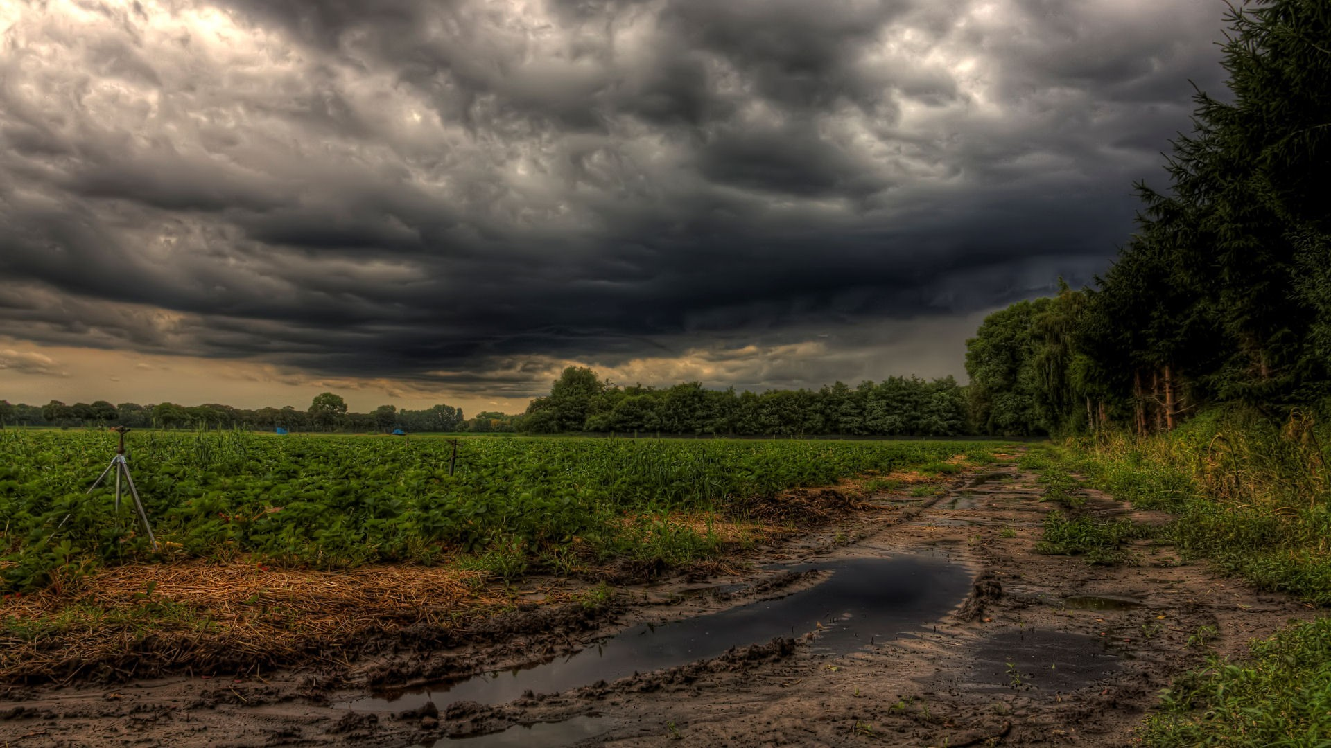 Storm Tag – Nature Forces Clouds Strawberry Fields Storm Dark Building  Field Wallpaper Download For Pc