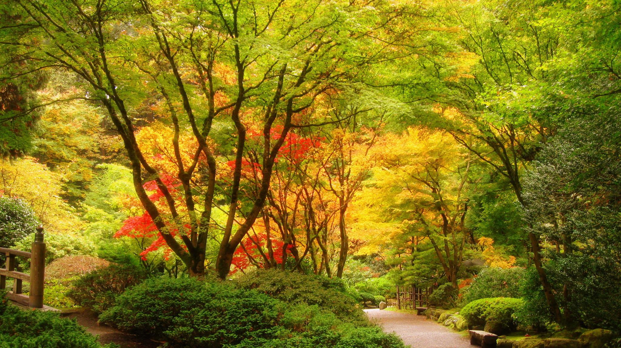 Wallpapers USA Portland Japanese Nature Gardens Trees 2048×1149